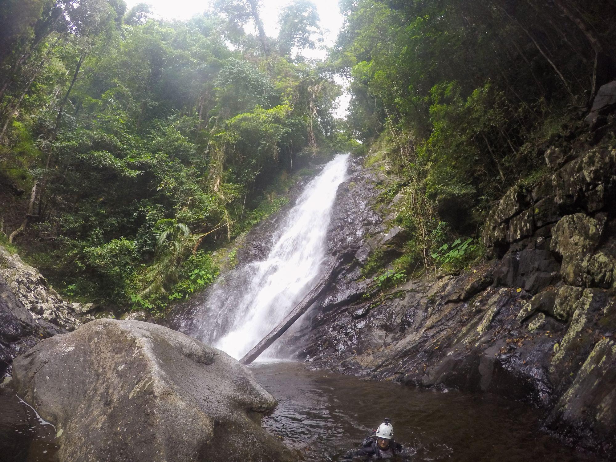 false falls Daintree National Park