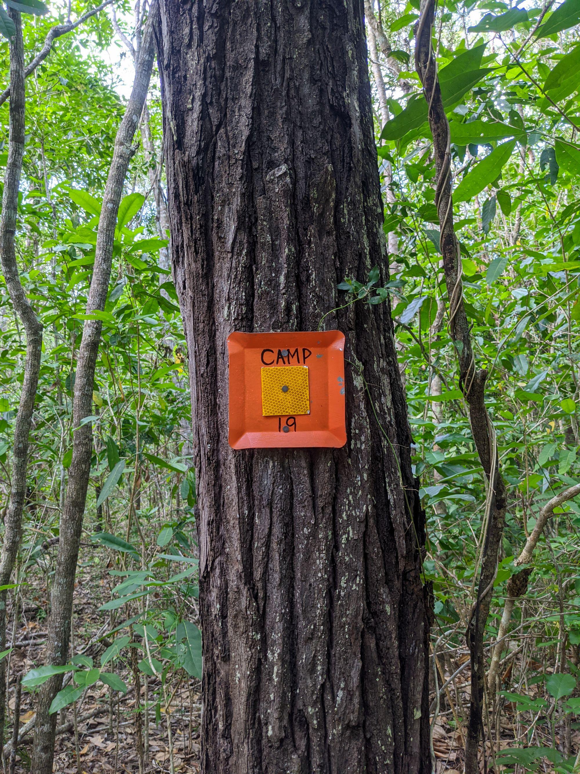 roly creek camp 19