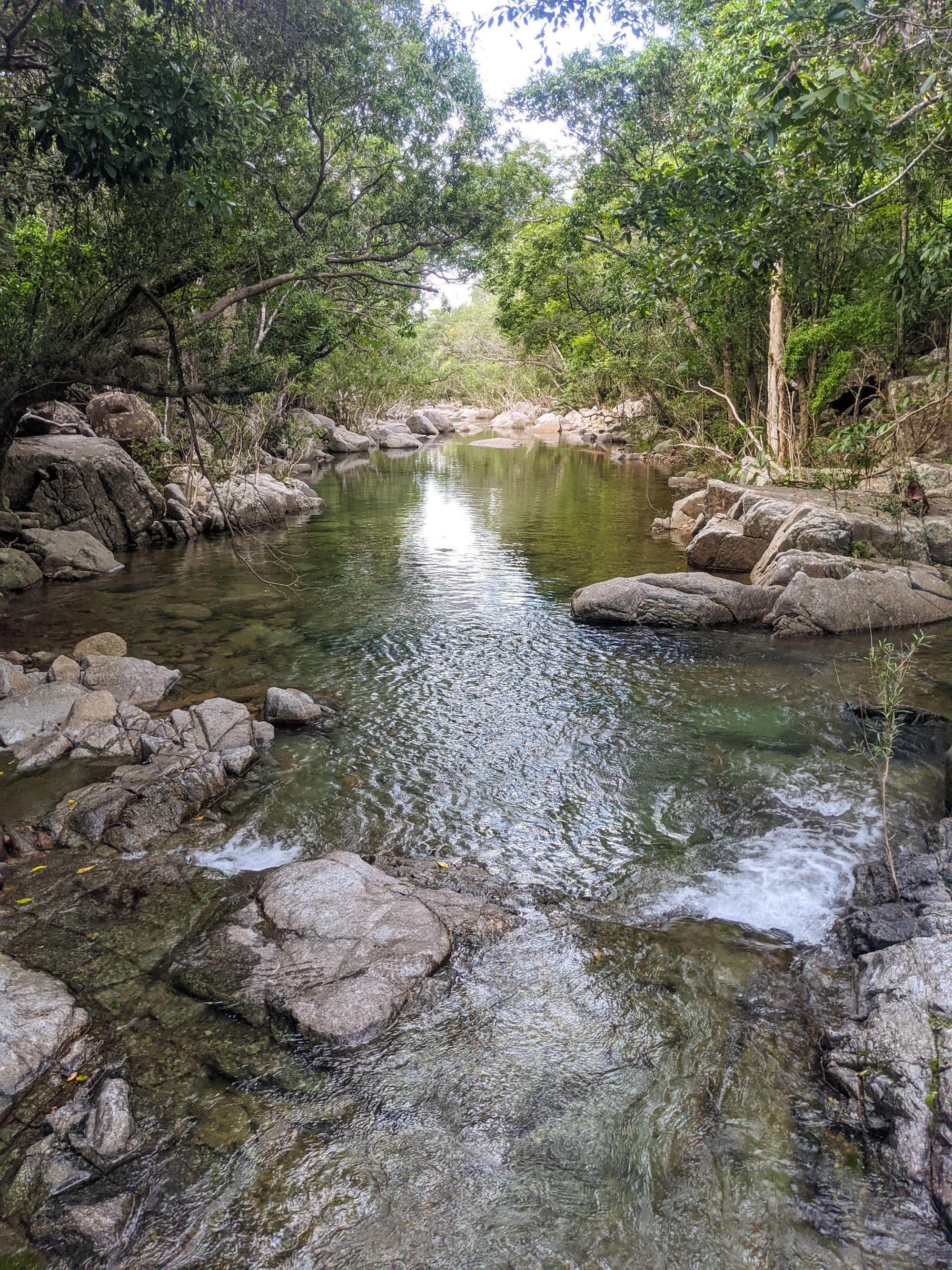 roly creek