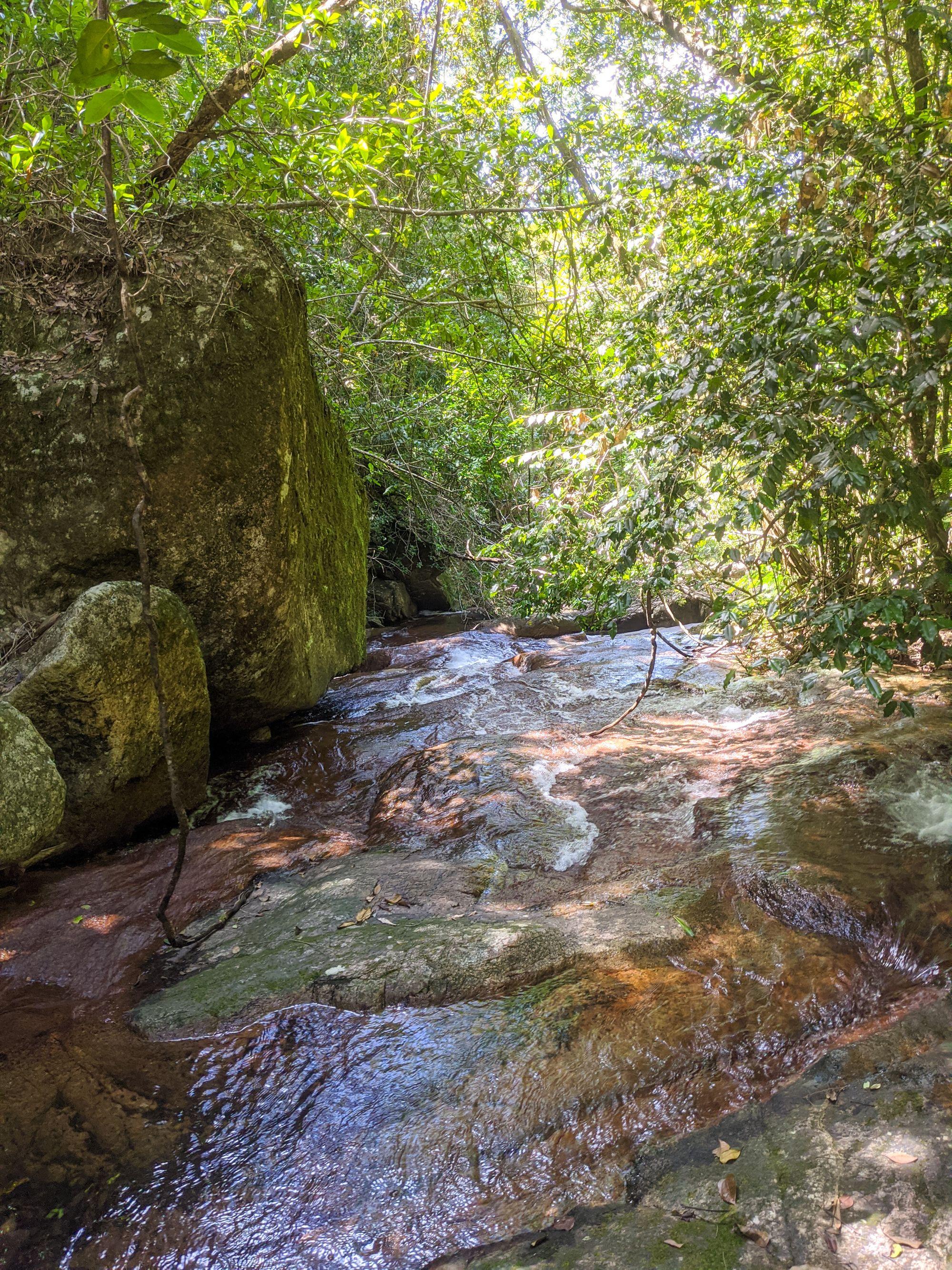 upper bullocky toms creek slabs
