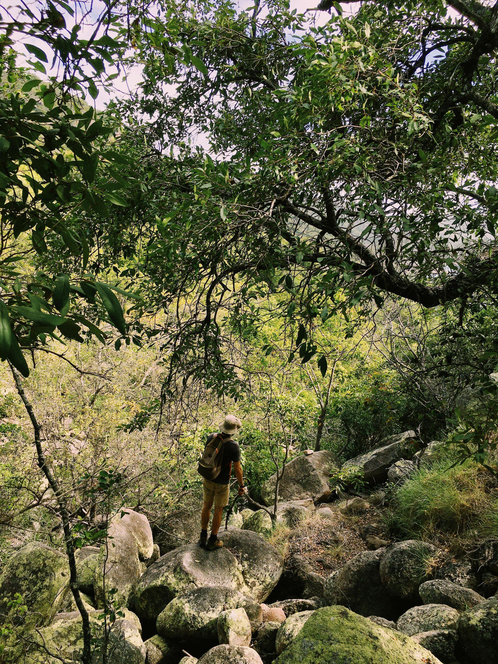 Bushwalking to Maud Bay Magnetic Island