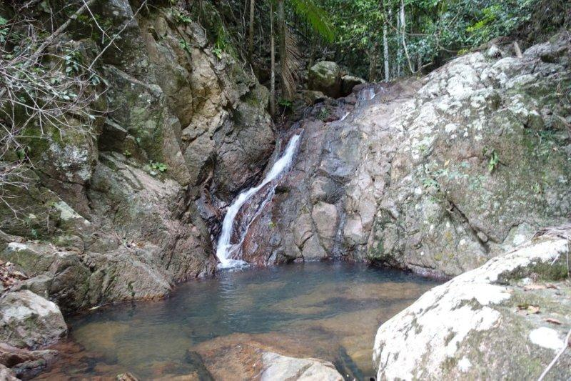 roly creek cascades