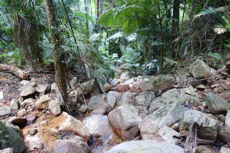 roly creek hike