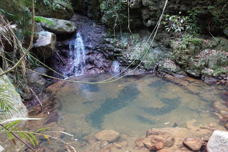 roly creek pool