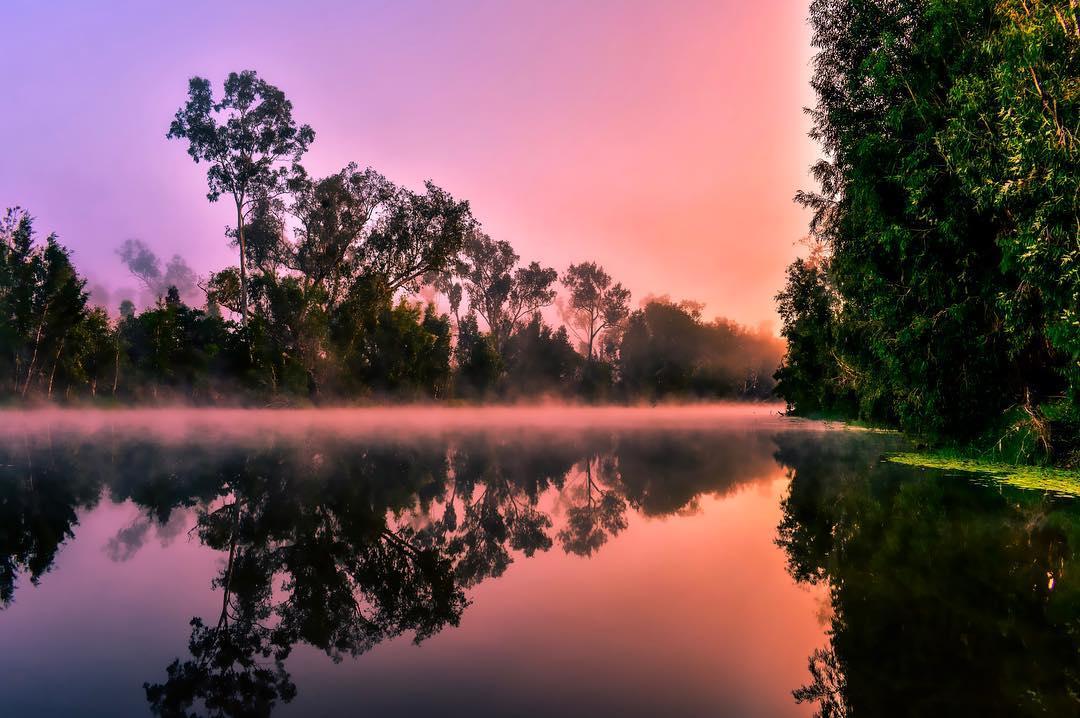 keelbottom creek morning mist hervey range