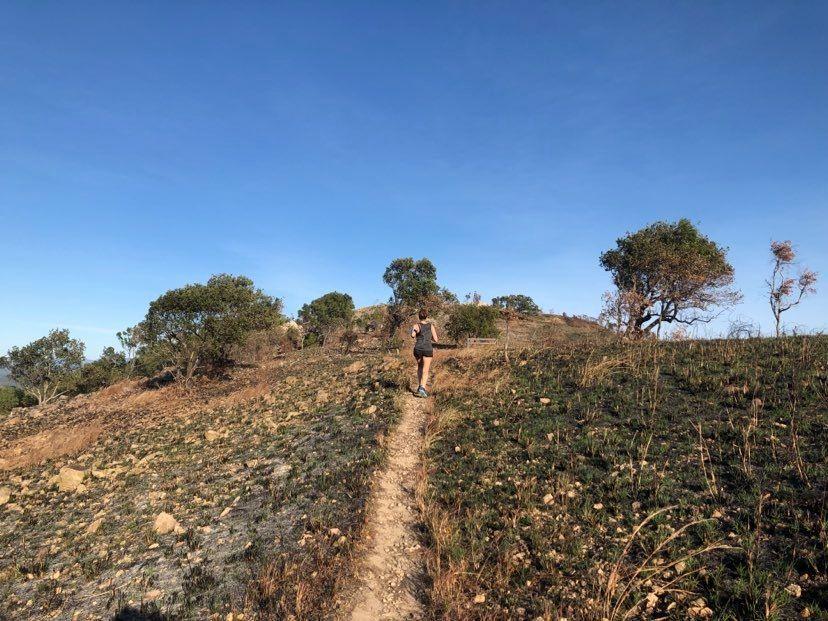 many peaks pallarenda trail running