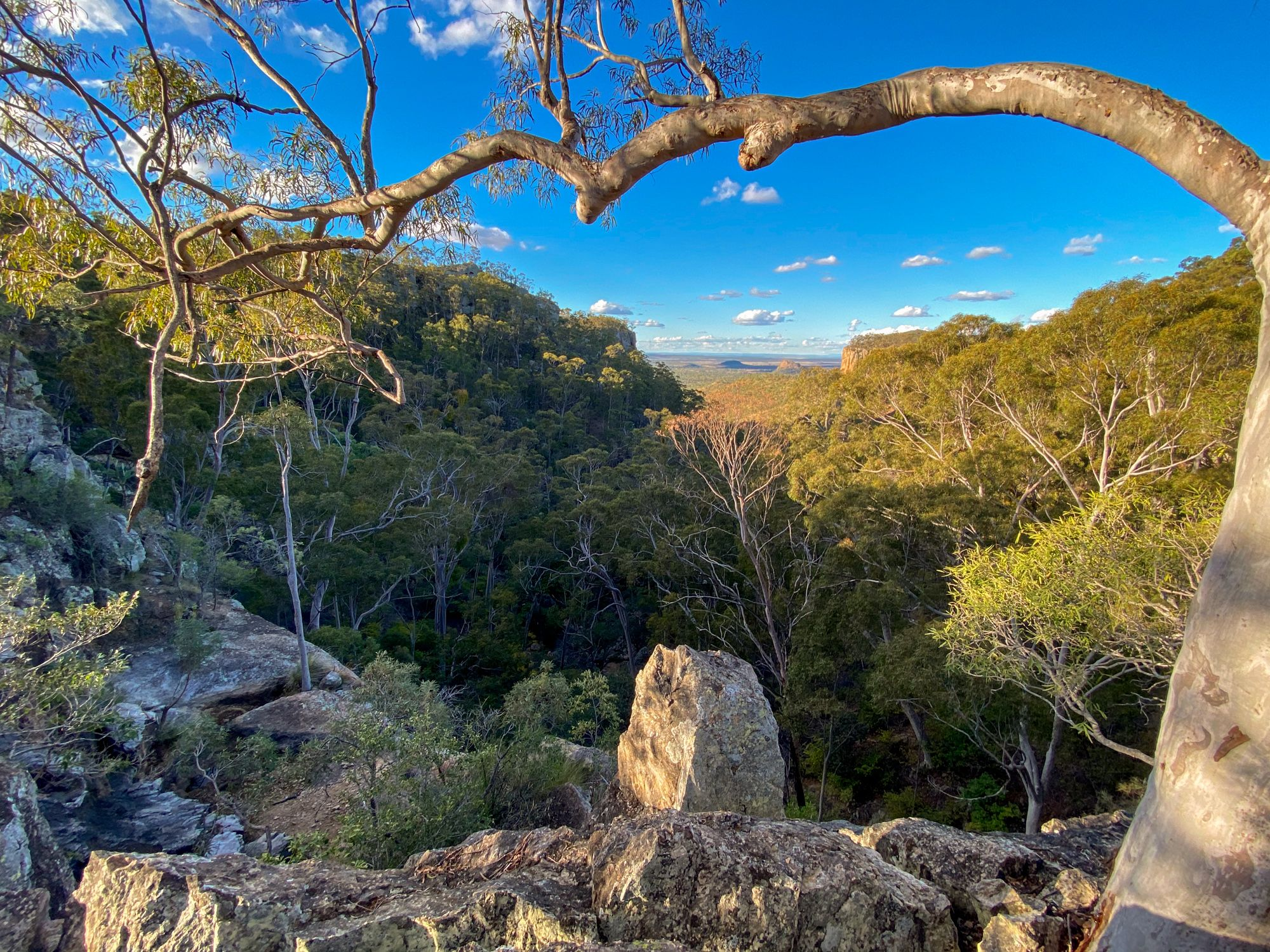 Freds Gorge Minerva Hills National Park