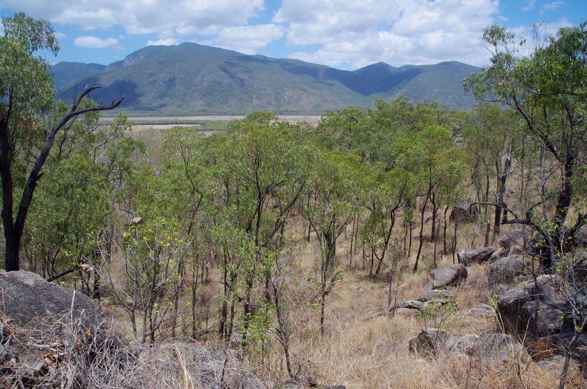 Mount Burrumbush vantage point
