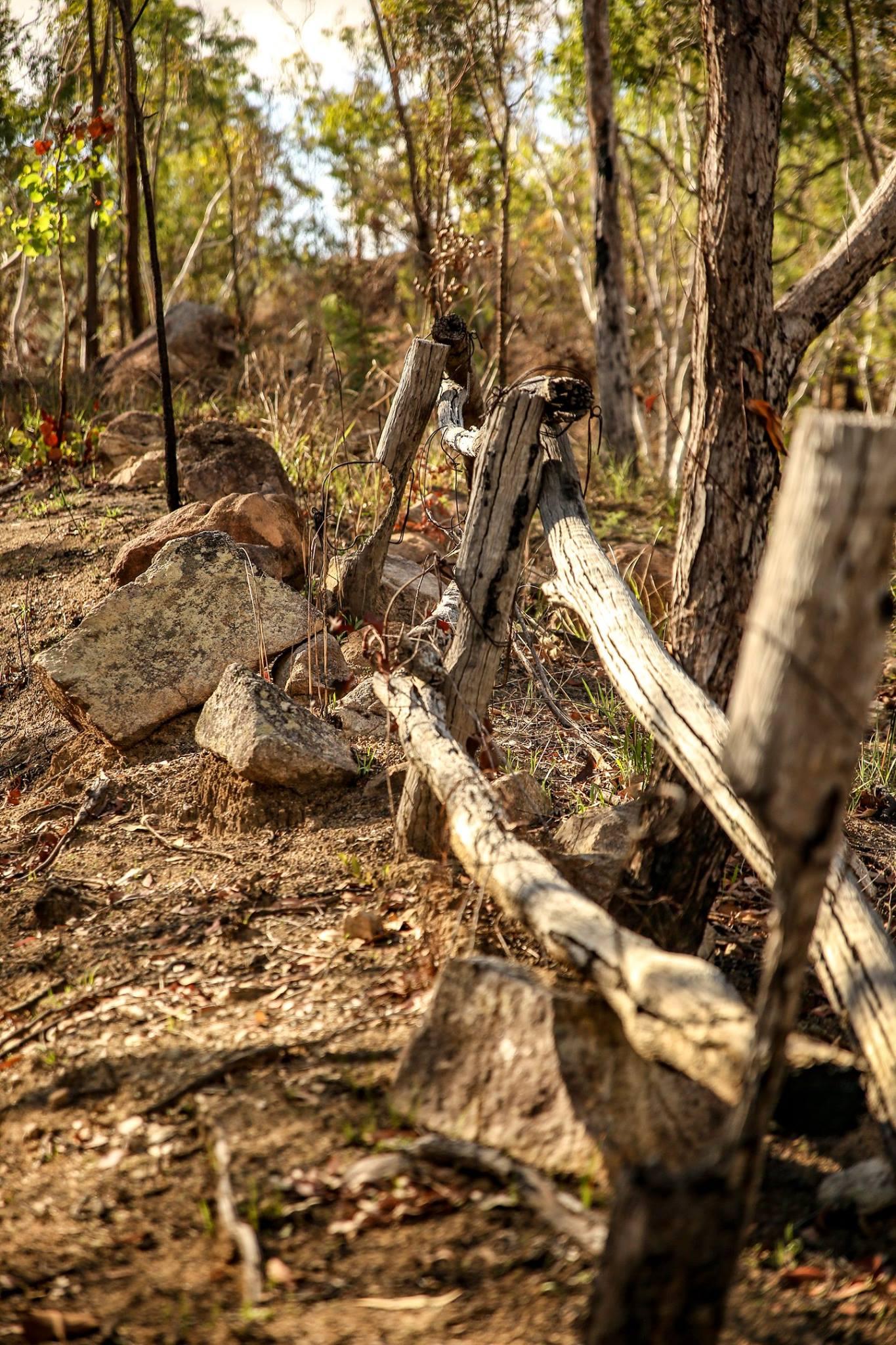 hervey range old fence