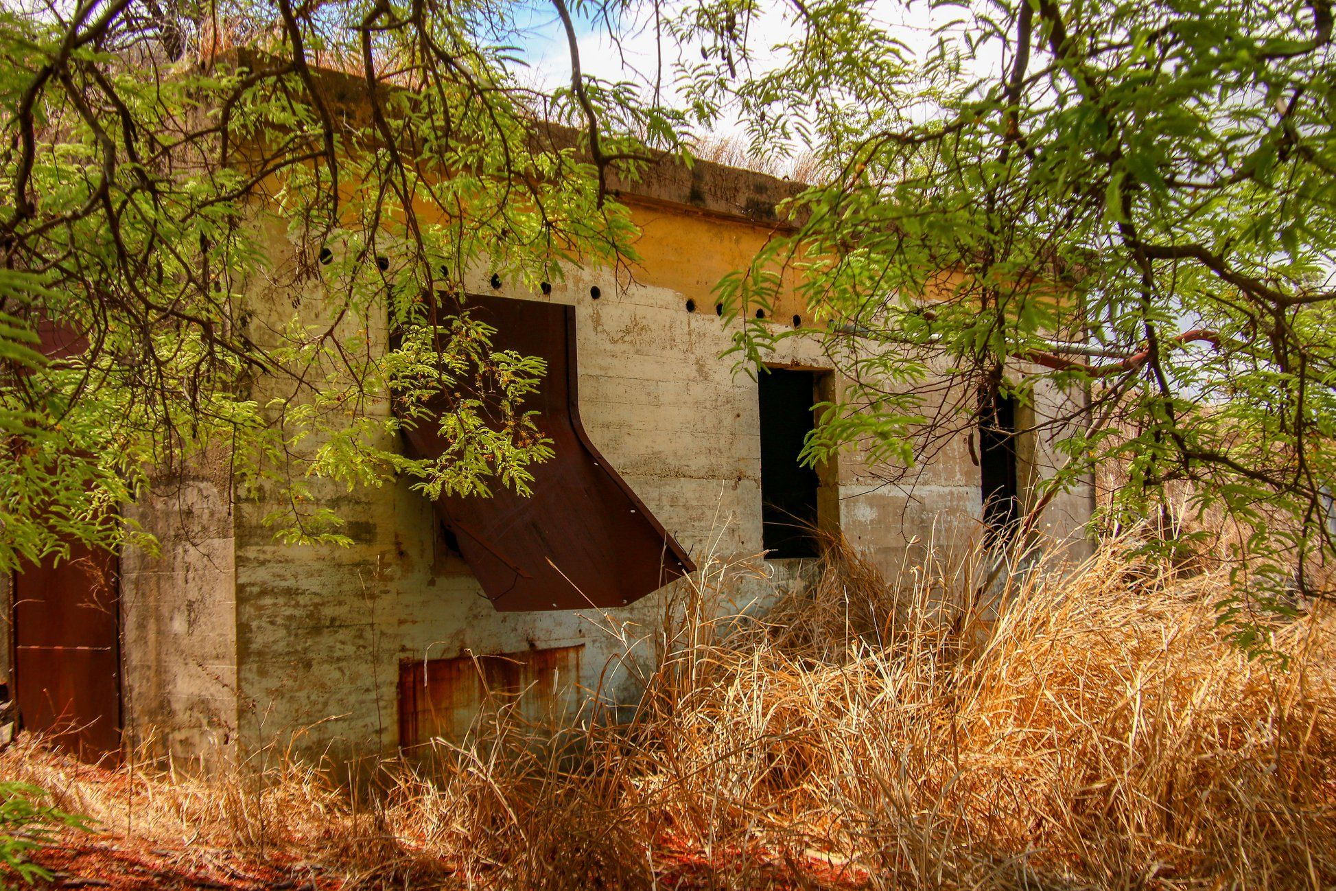 jimmy s bunker townsville