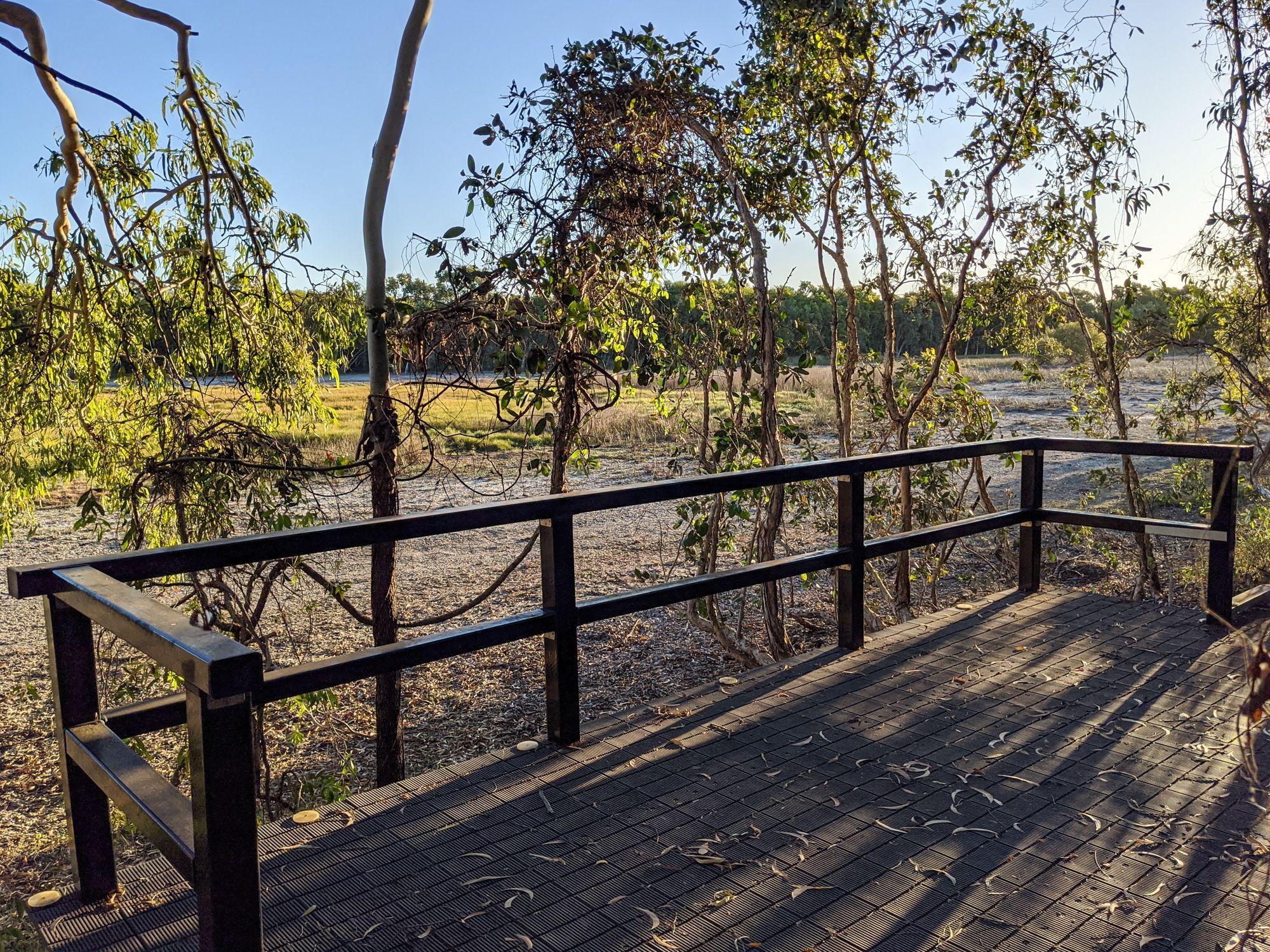 rowes bay wetlands viewing platform