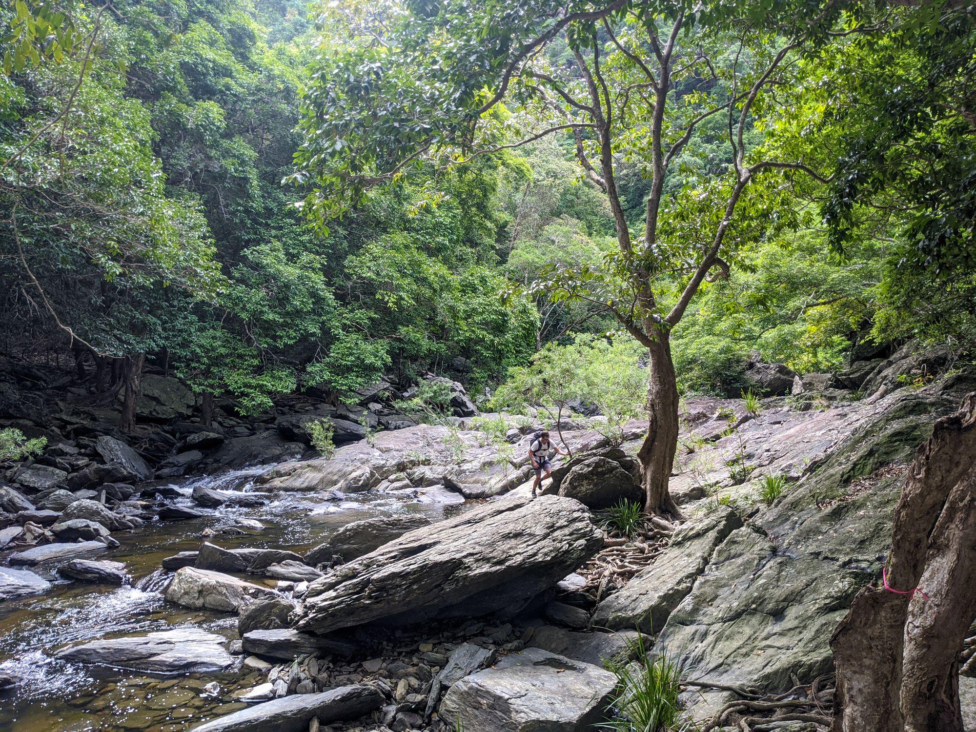spring creek hike mowbray