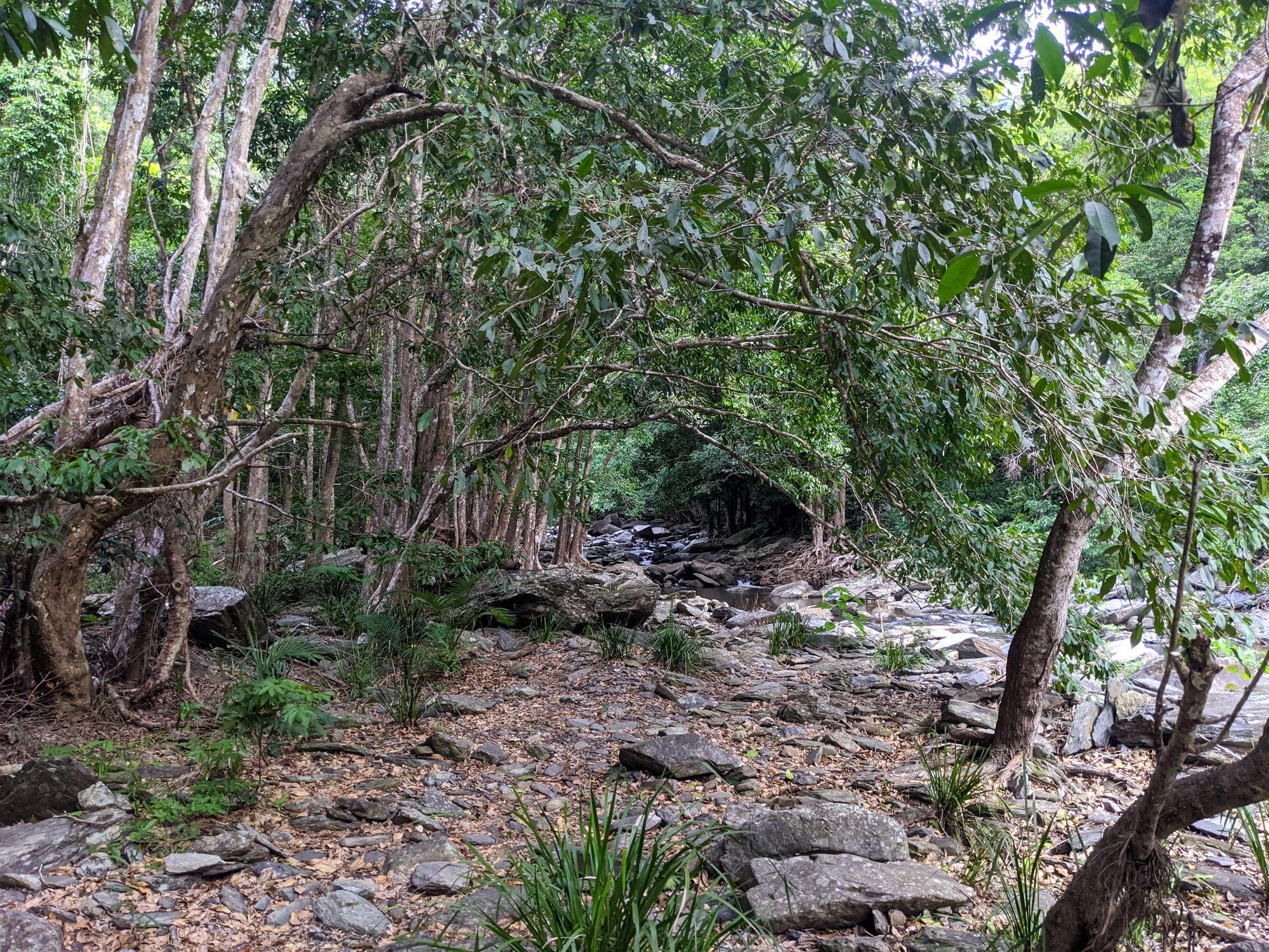 spring creek mowbray