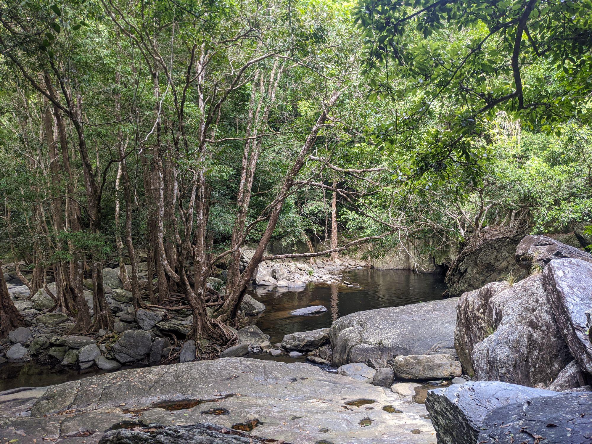spring creek pool mowbray