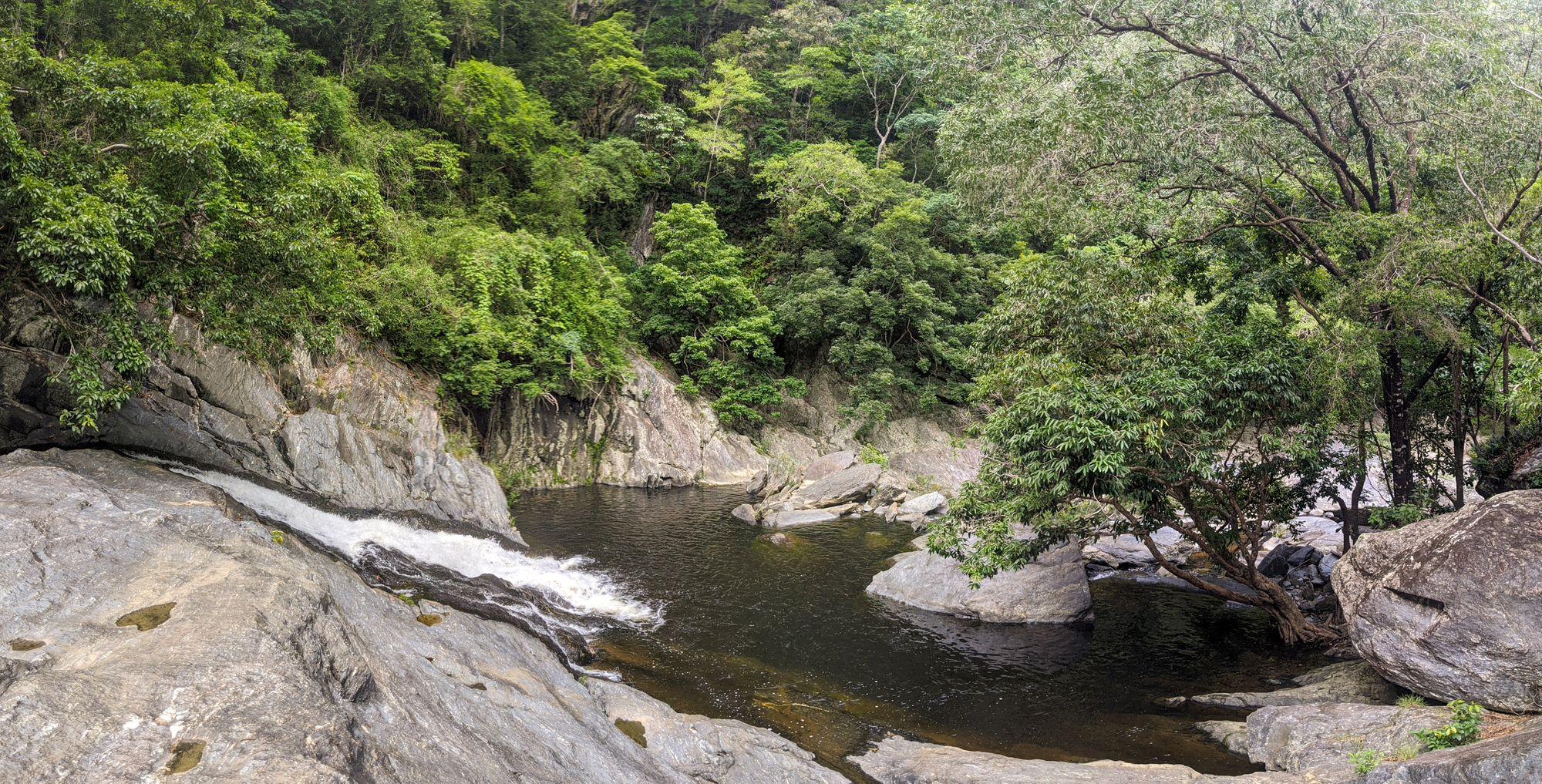 spring creek swimming pool