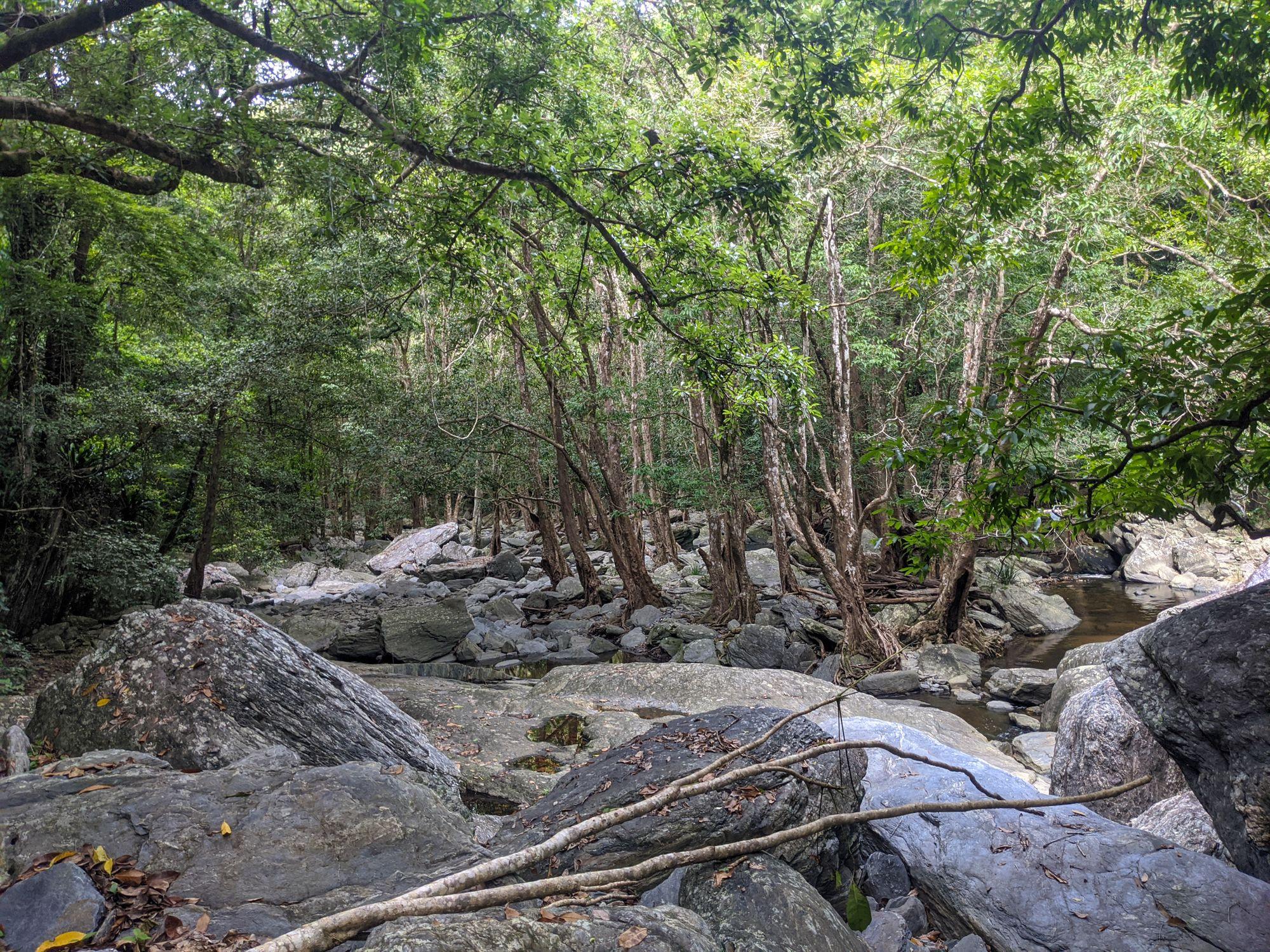 spring creek walk mowbray