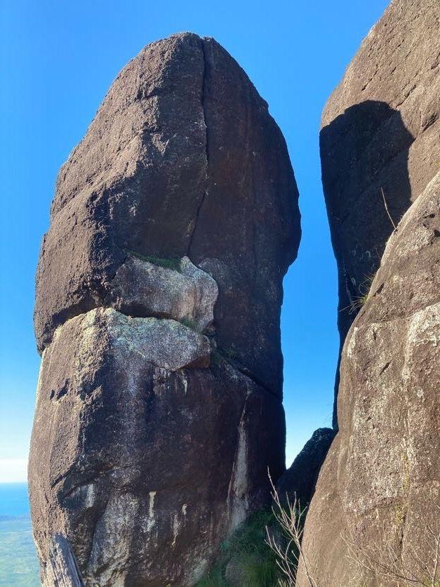 the prophet hinchinbrook island national park