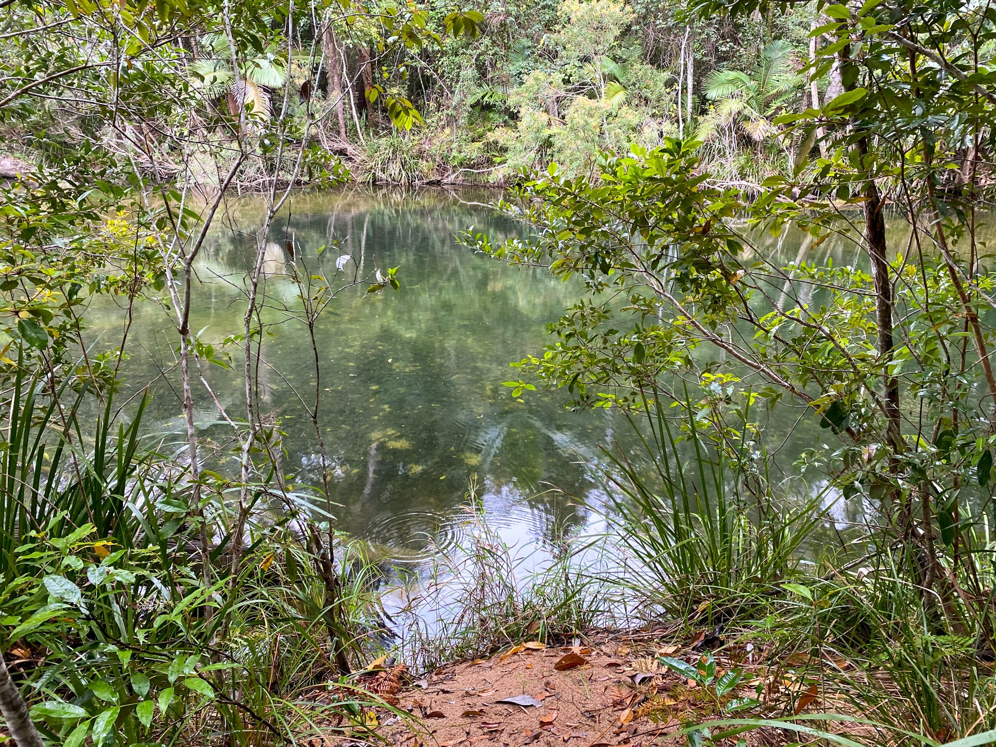 big lagoon swimming hole