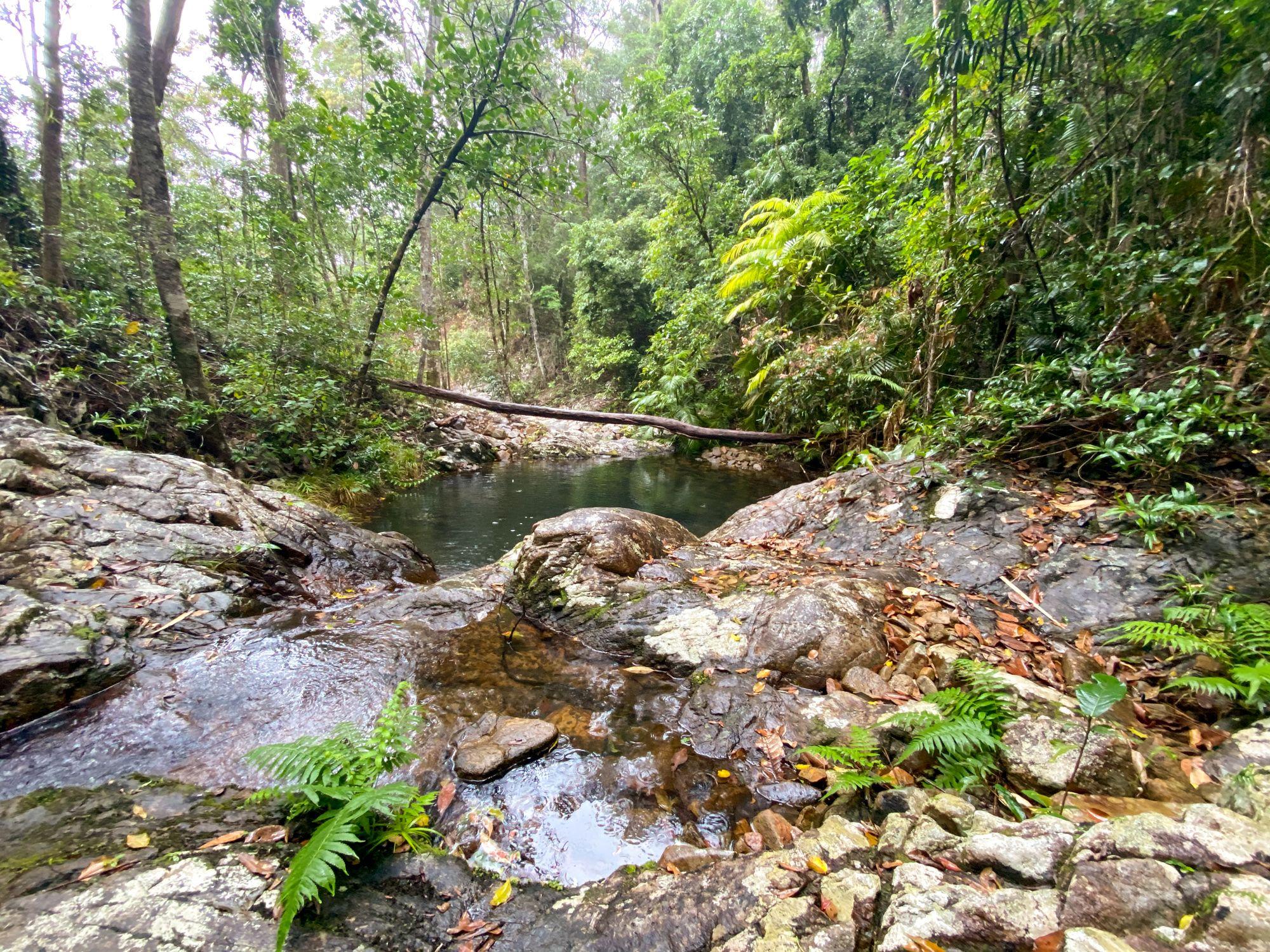 dump creek cascade