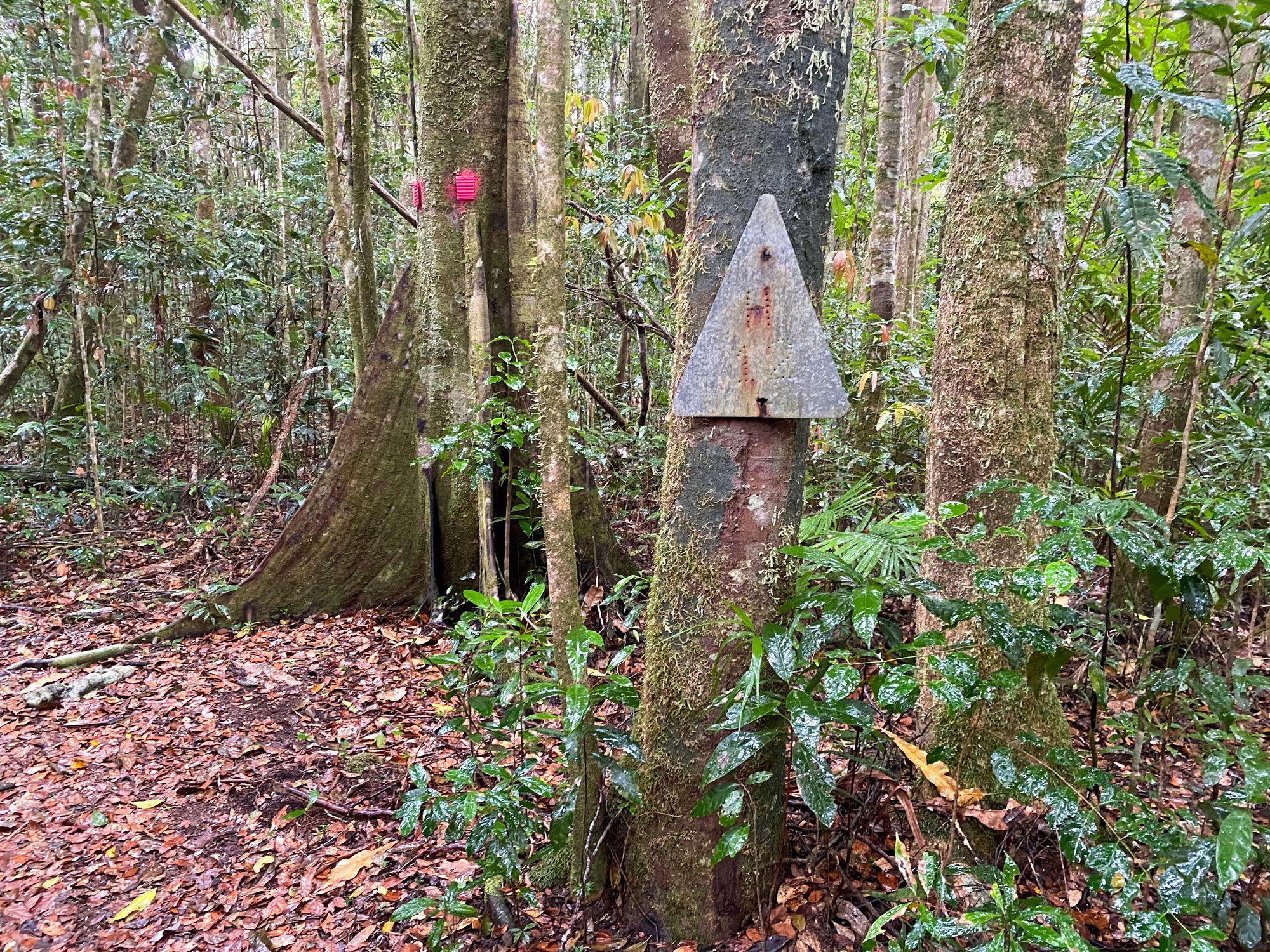 forestry logging road marker