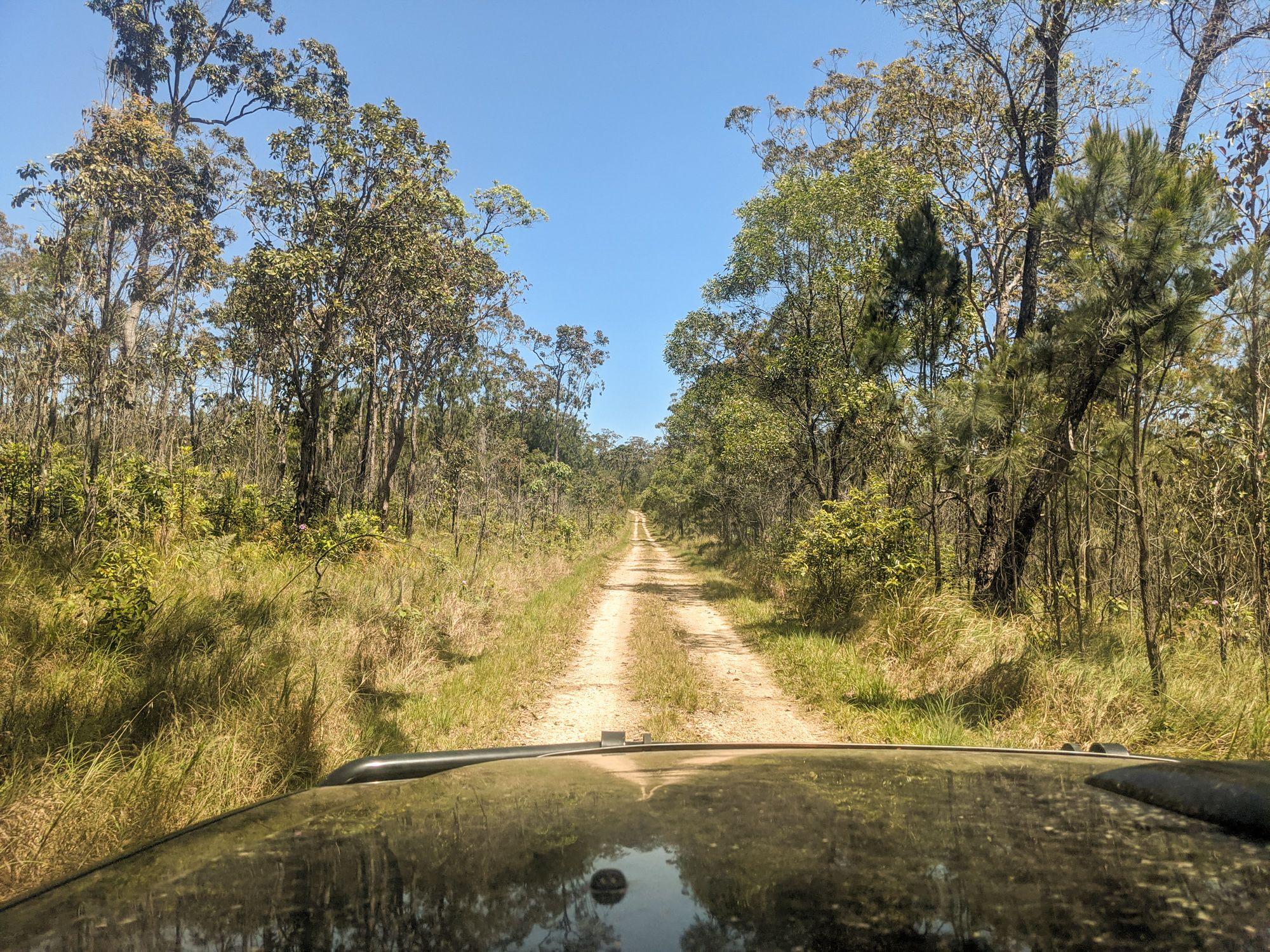 Garrawalt Road Girringun