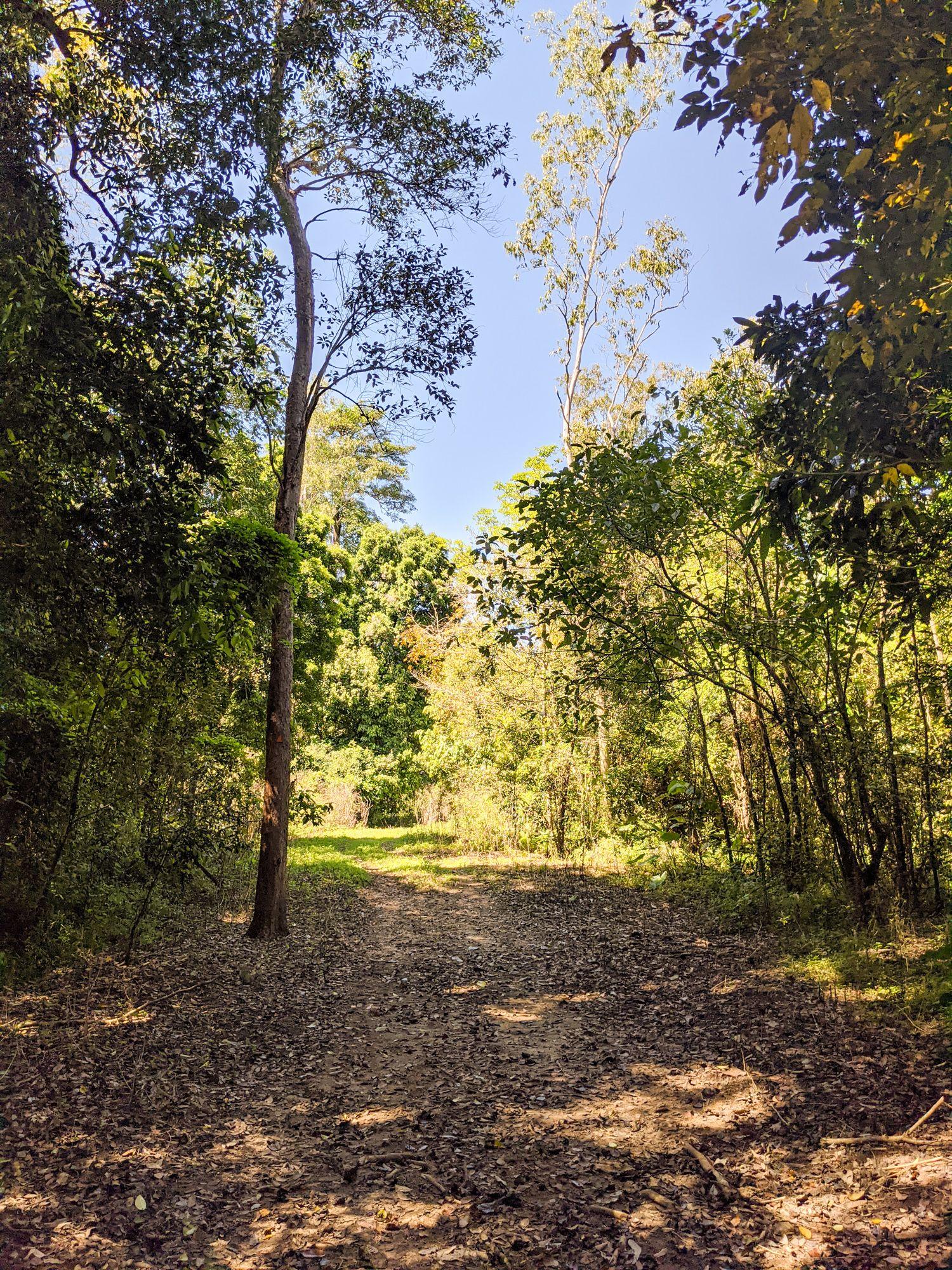 Henrietta Trail