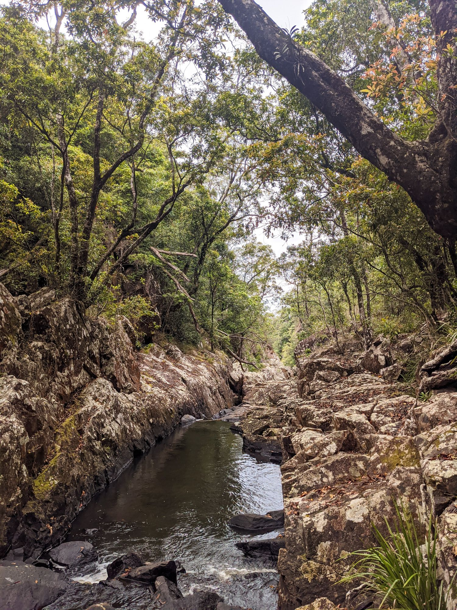 flagstone creek gorge start