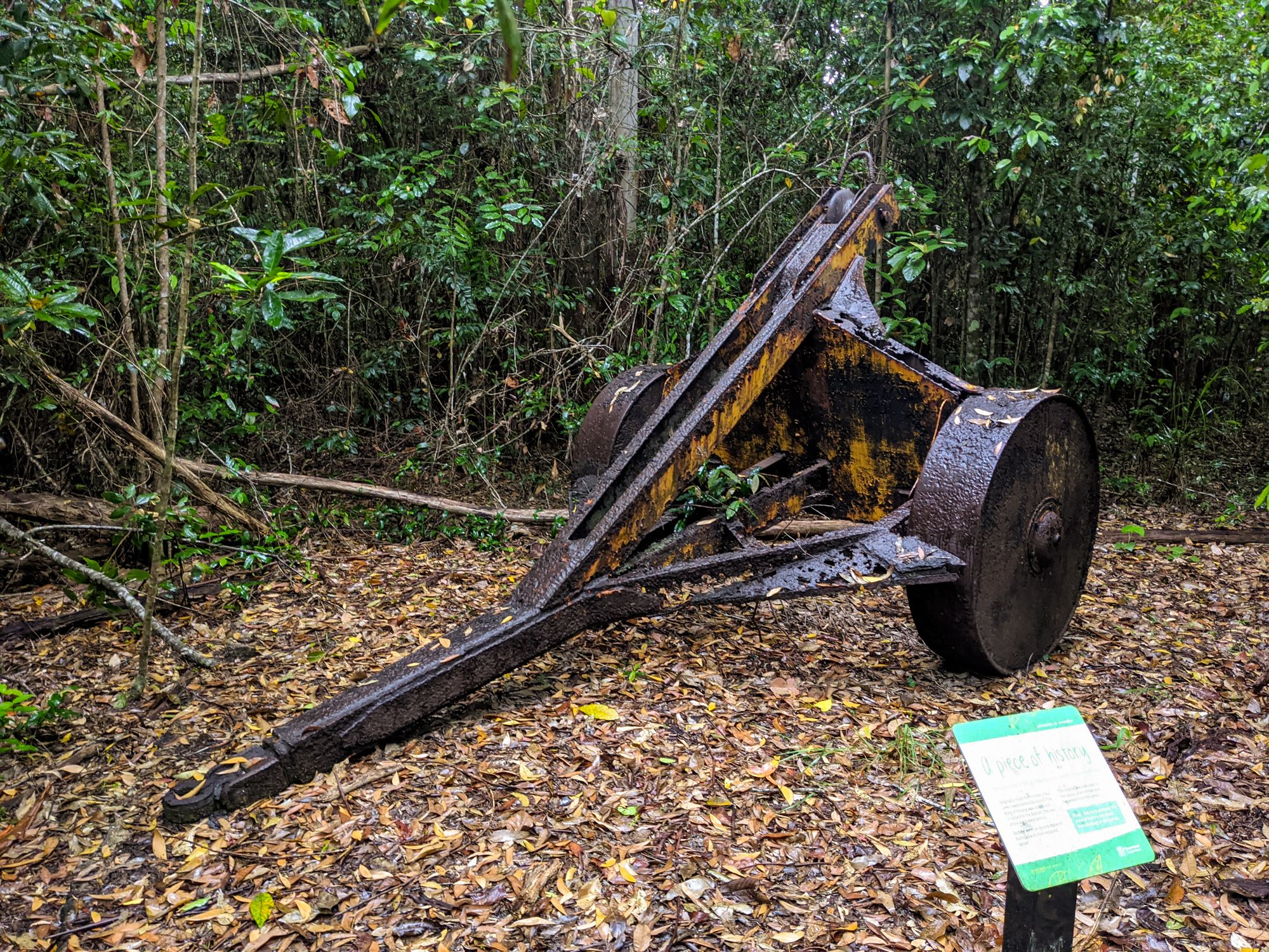 girringun garrawalt loggers camp
