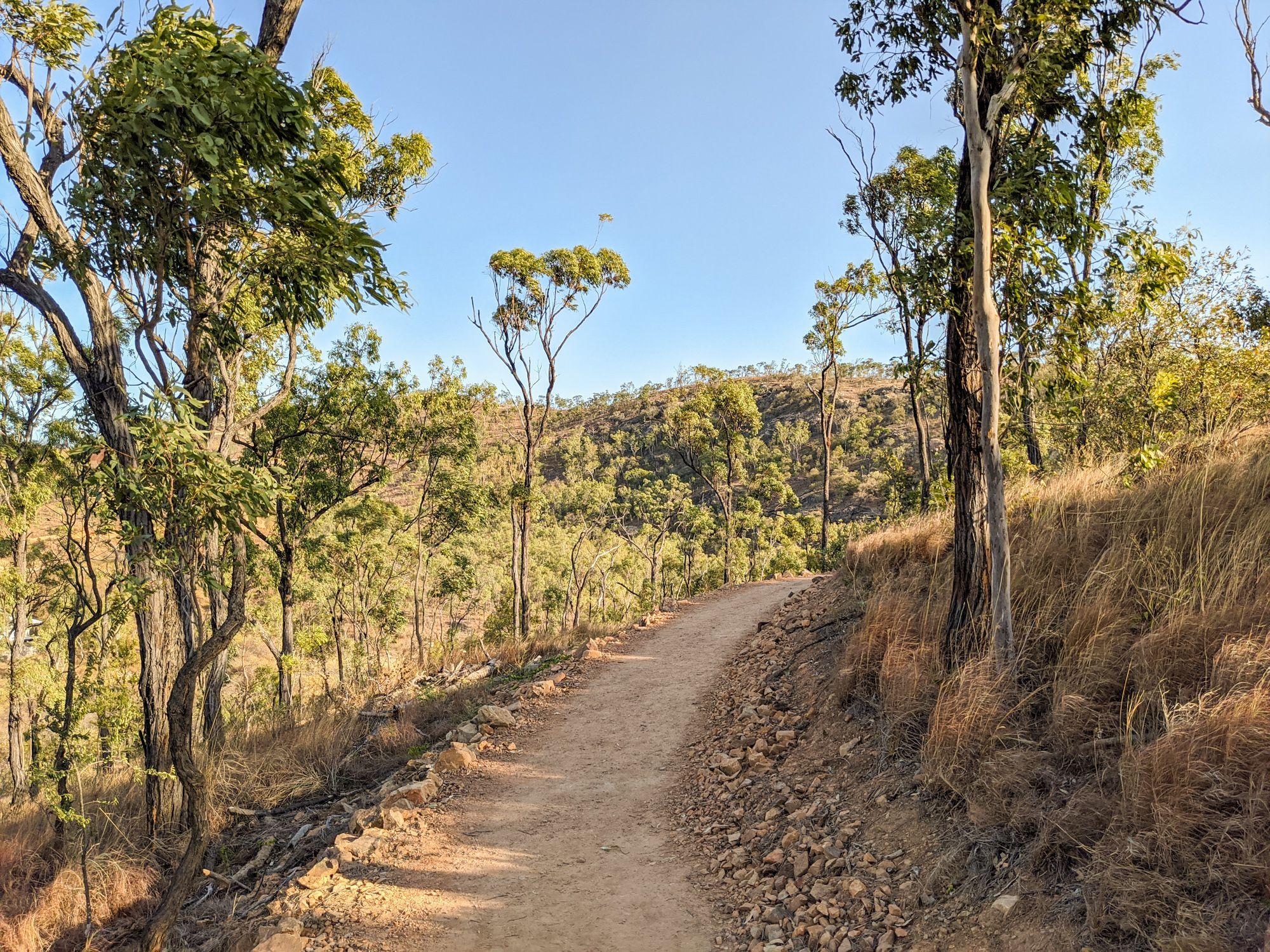 mt louisa trail