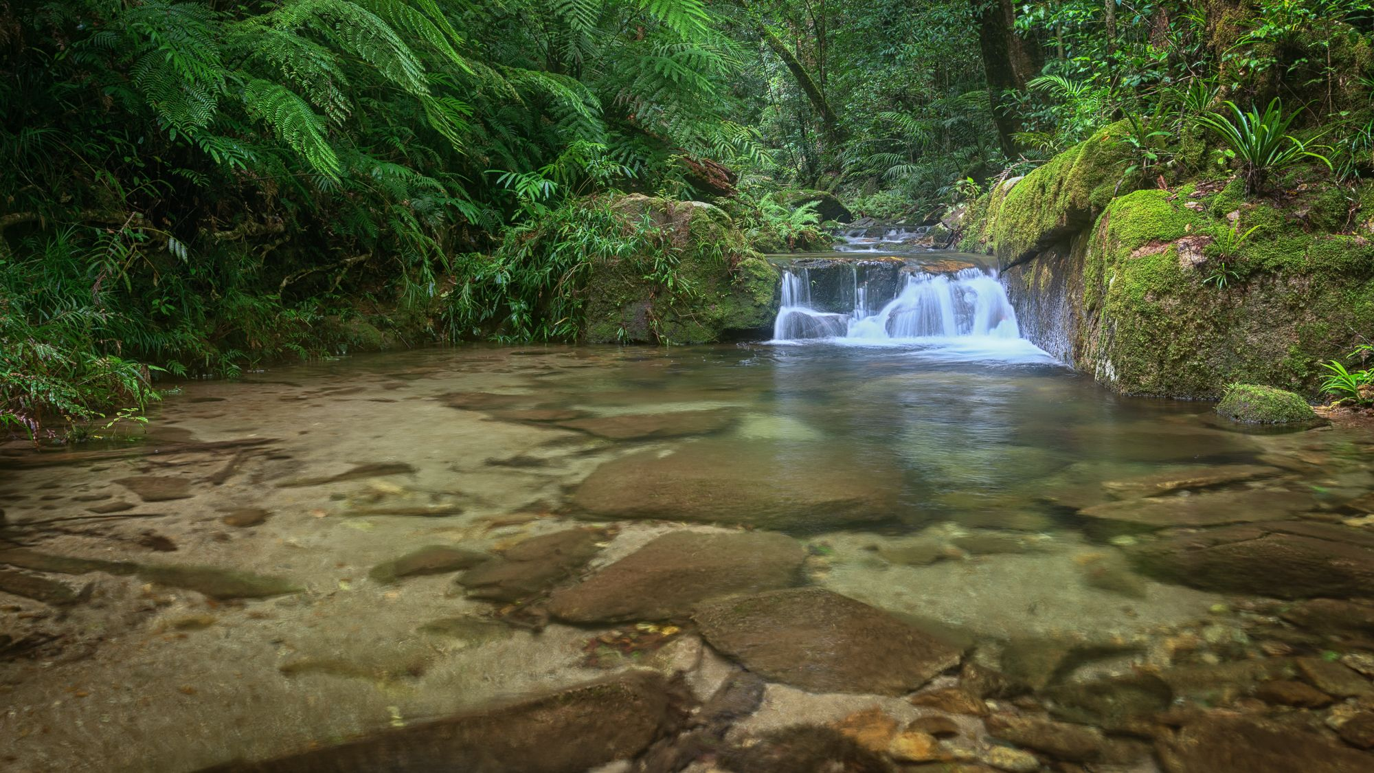 Dolby Creek cascade