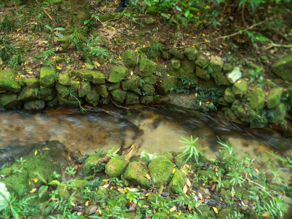 crystal creek paluma stone walls
