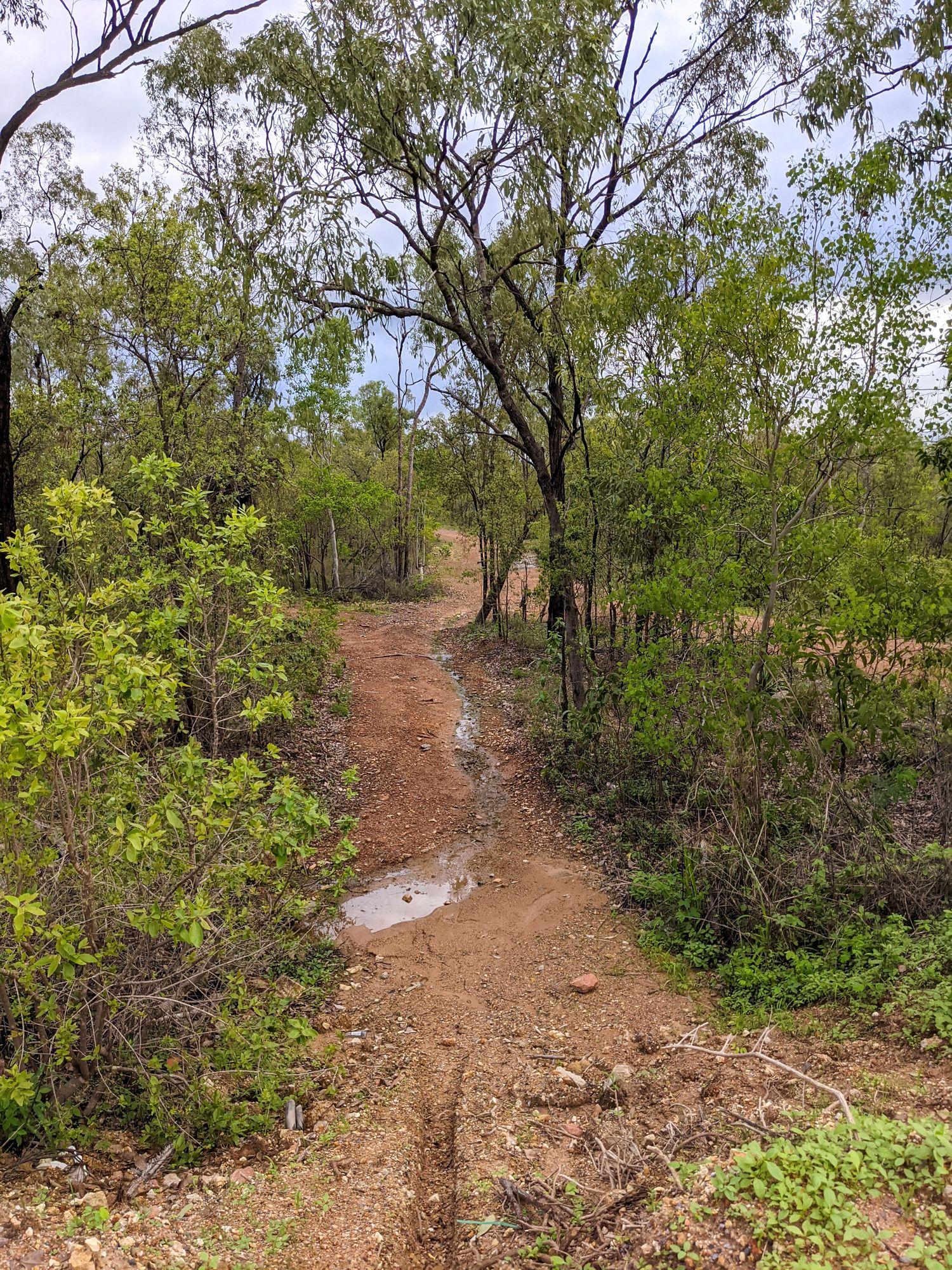 deeragun bohle tracks