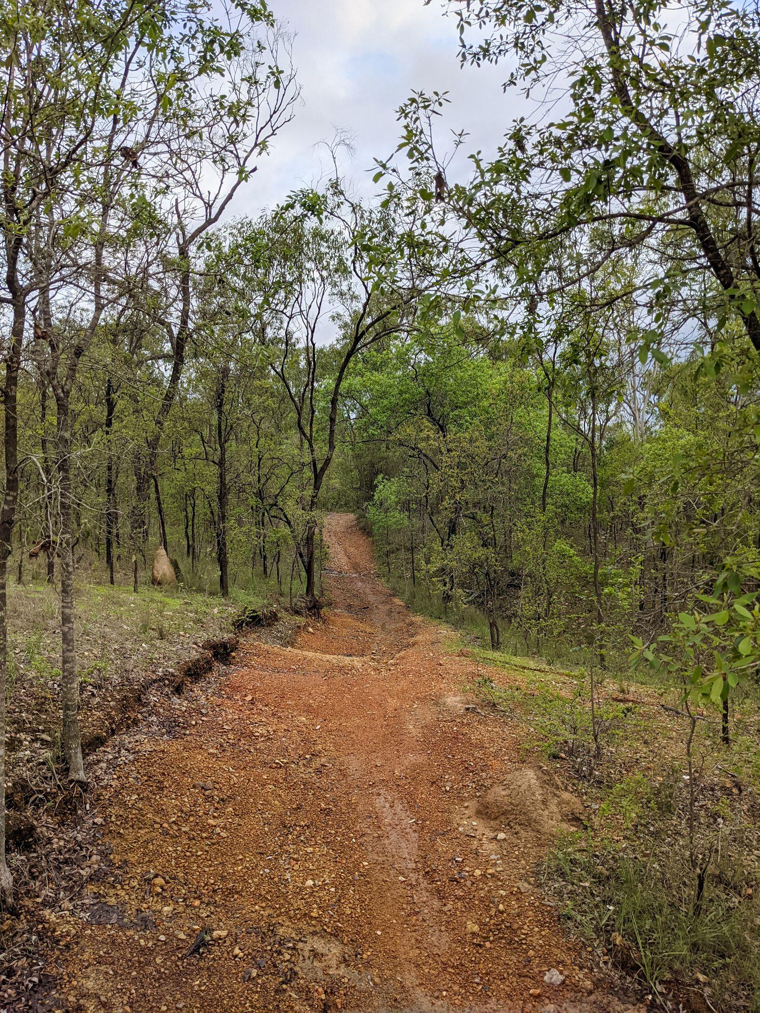 deeragun tracks
