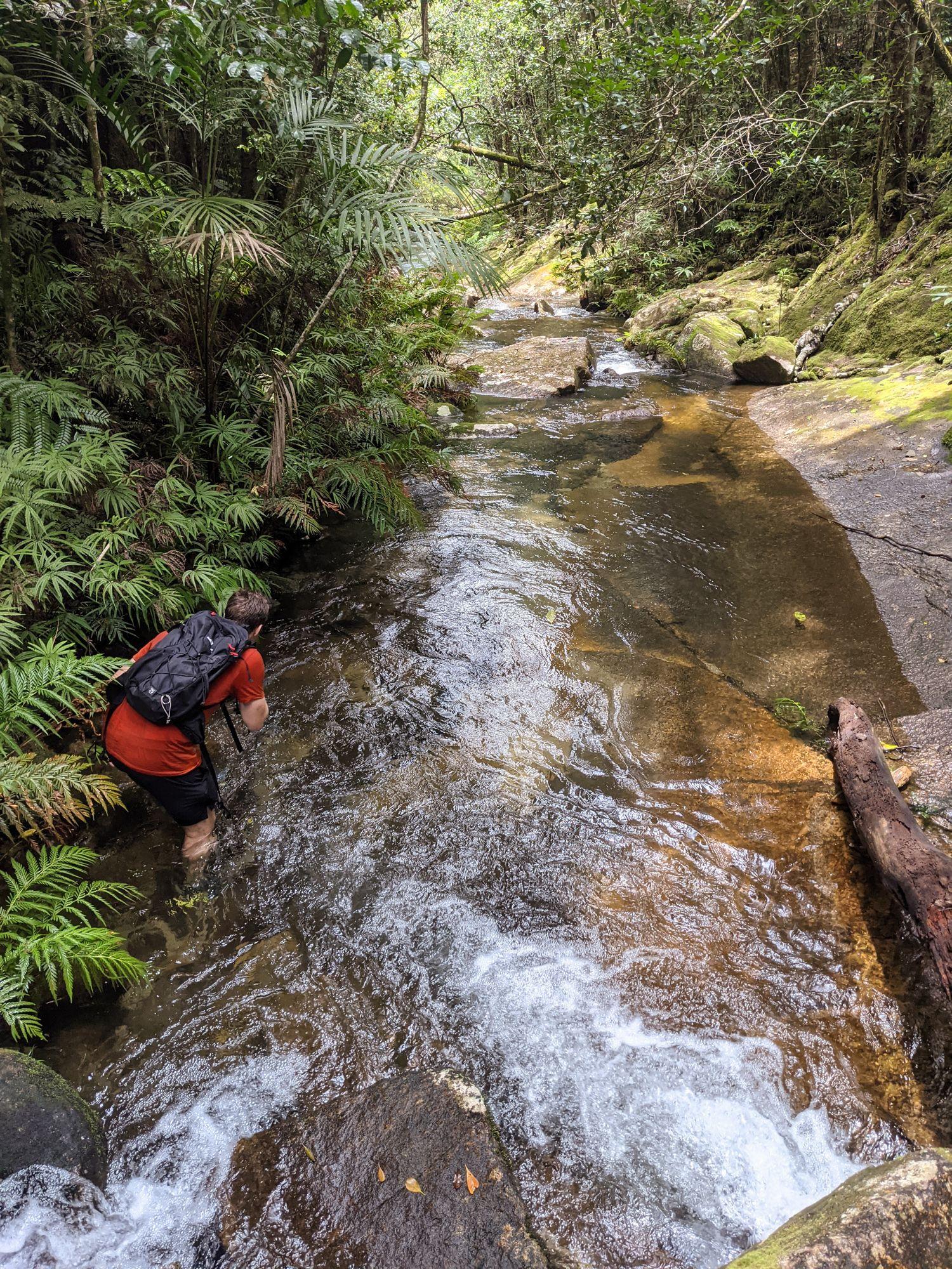 lower dolby creek matthew salinovich