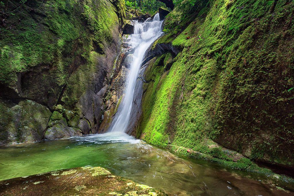 mossy falls paluma