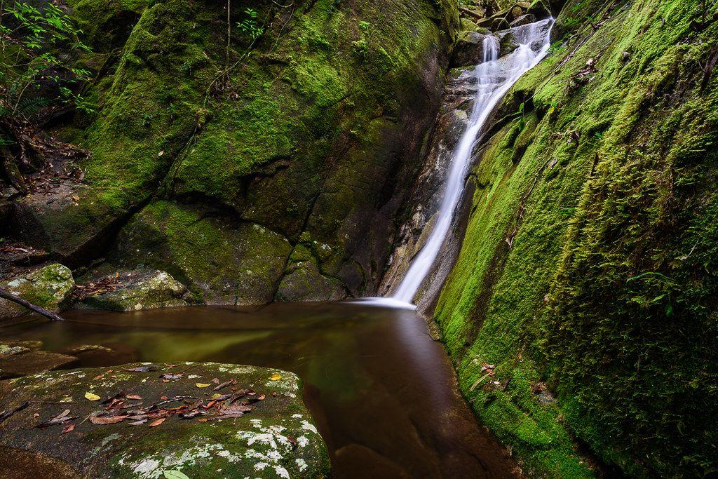 mossy waterfall paluma dam road