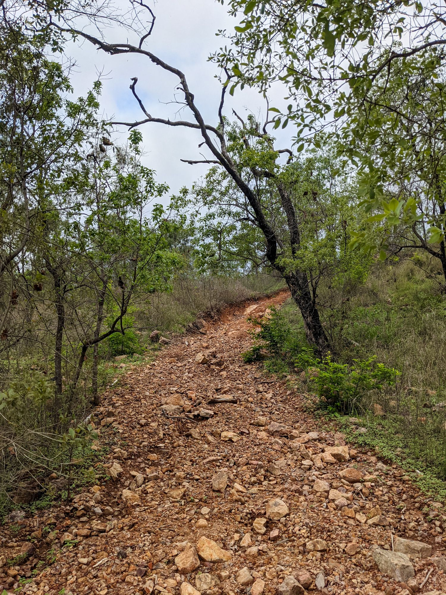 old 4wd track deeragun