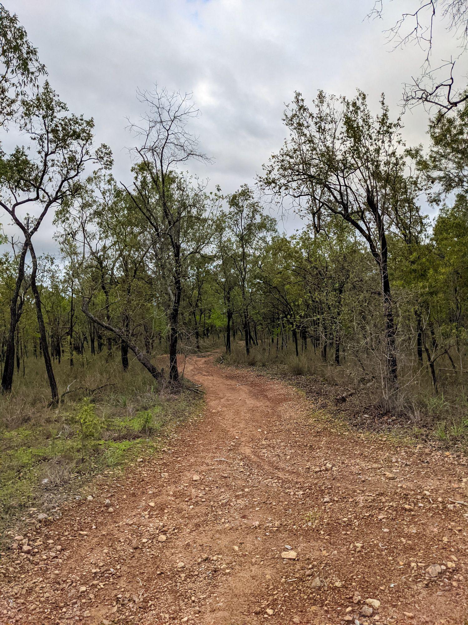 old trails deeragun