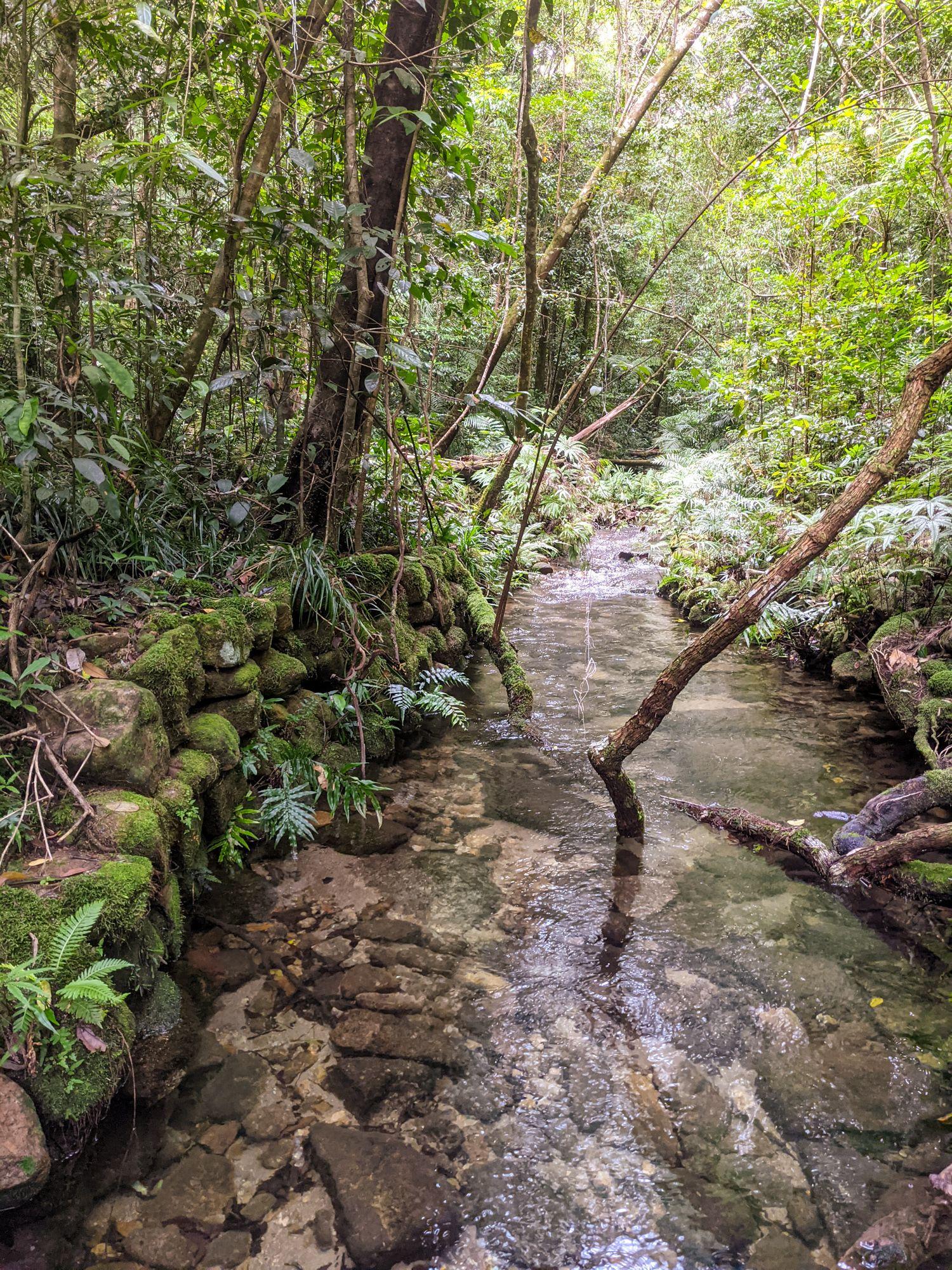 upper crystal creek paluma stone wall