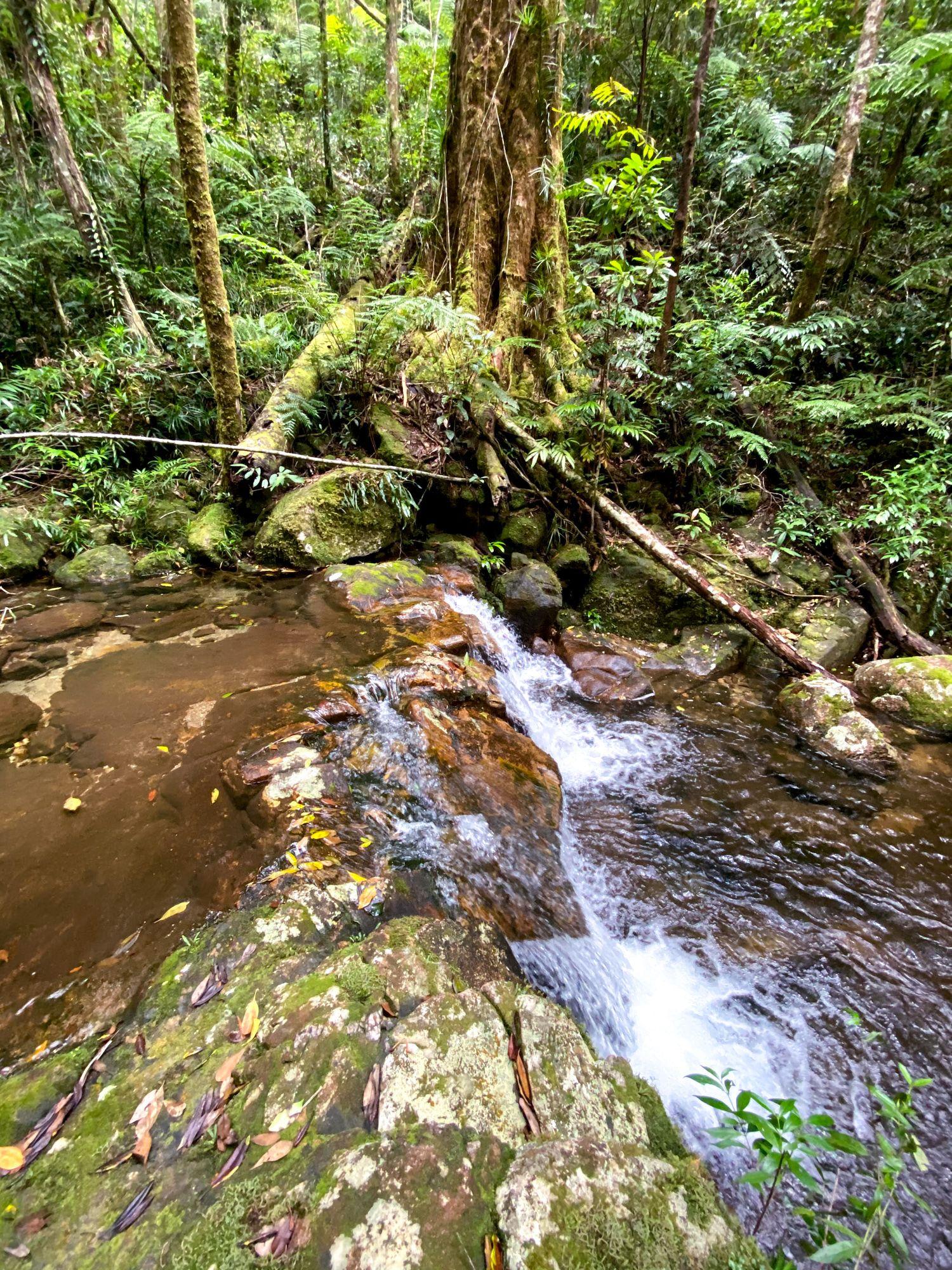 double barrel creek cascade side view