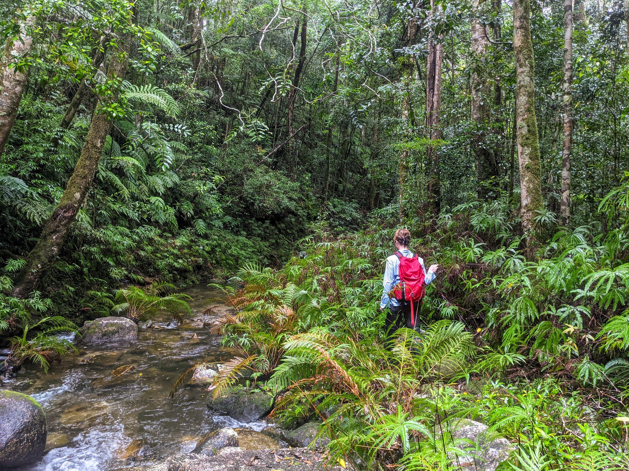 lower double barrel creek anneliese dickson