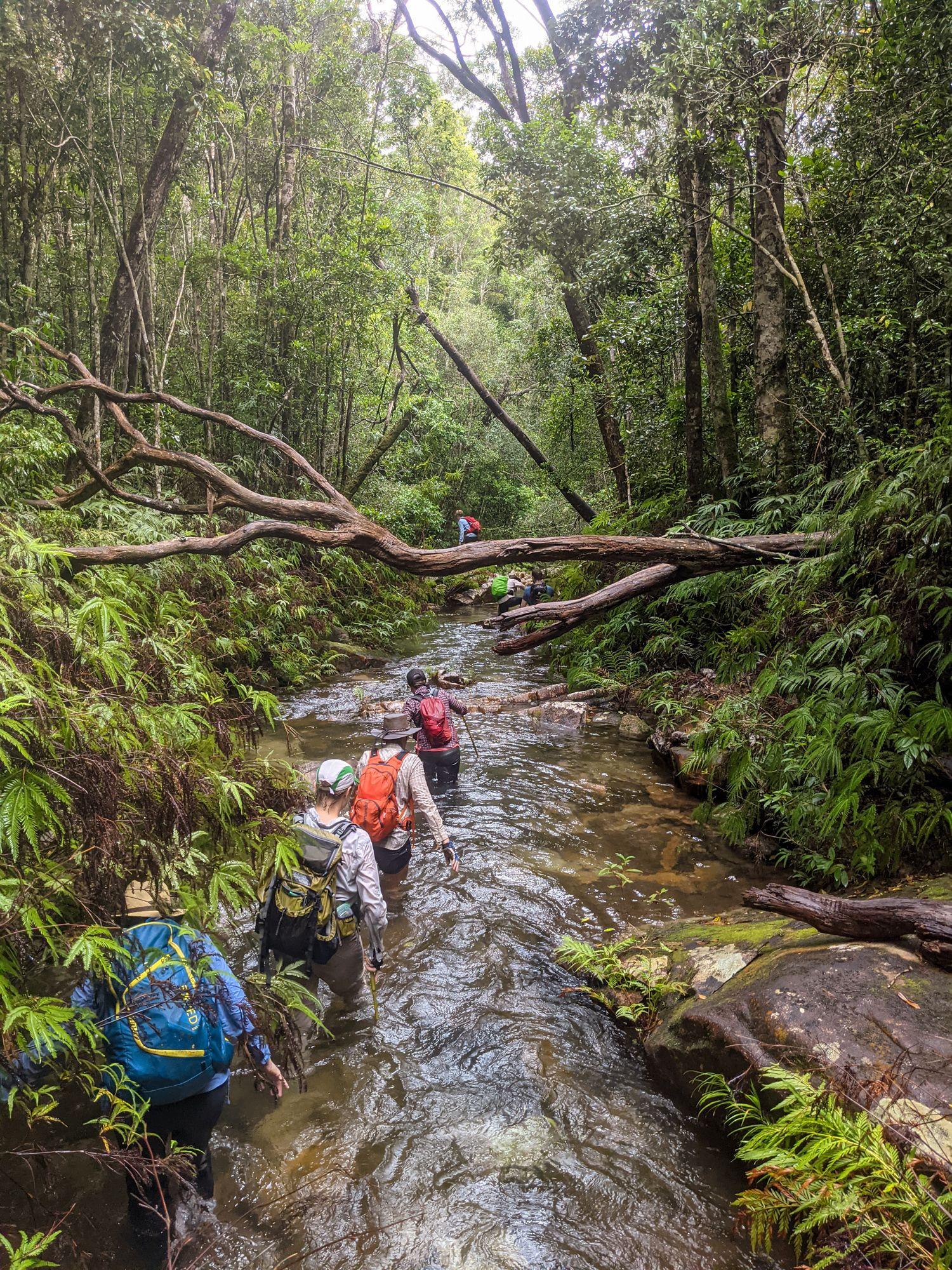 lower double barrel creek hike
