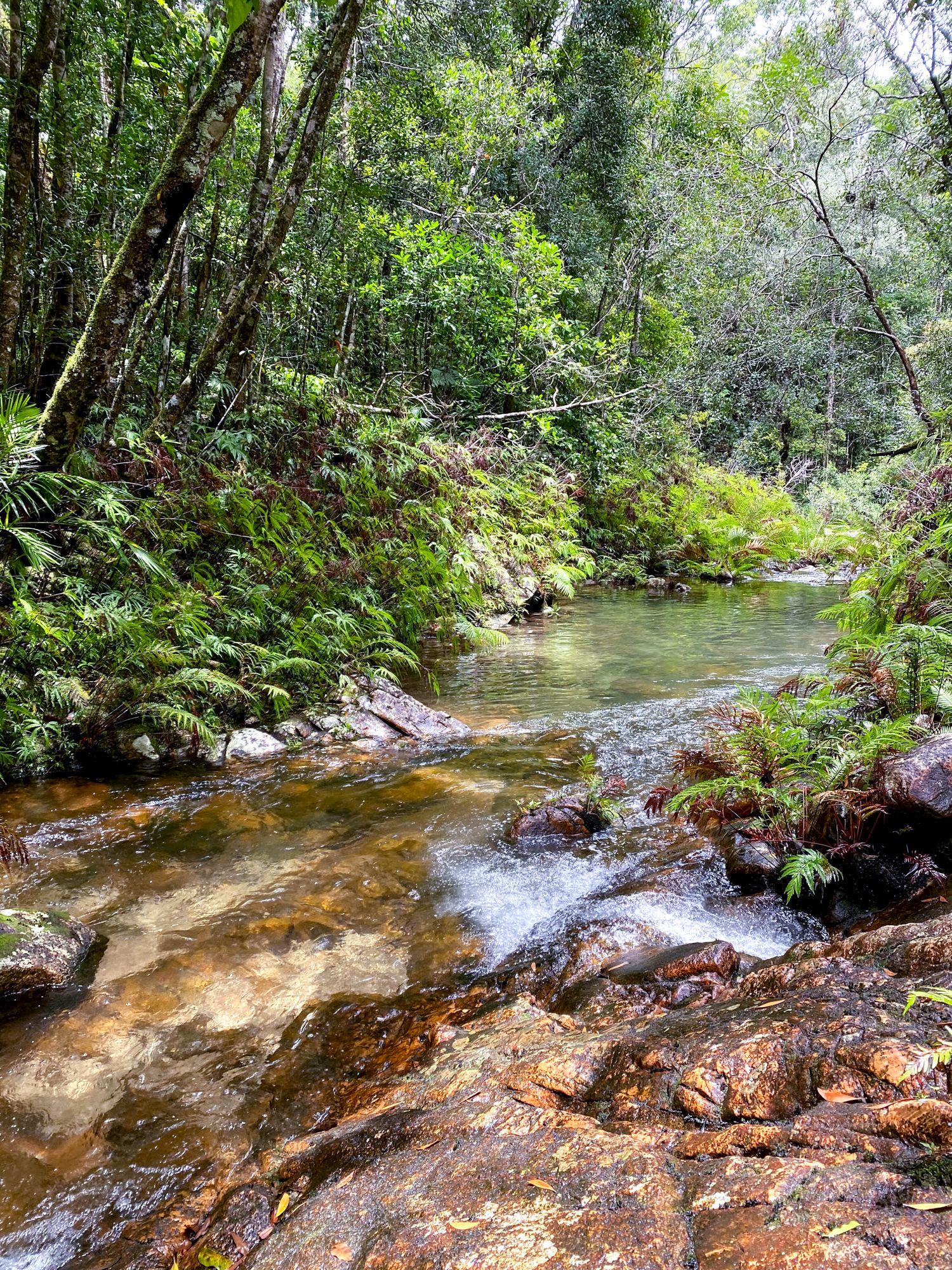 lower double barrel creek stream