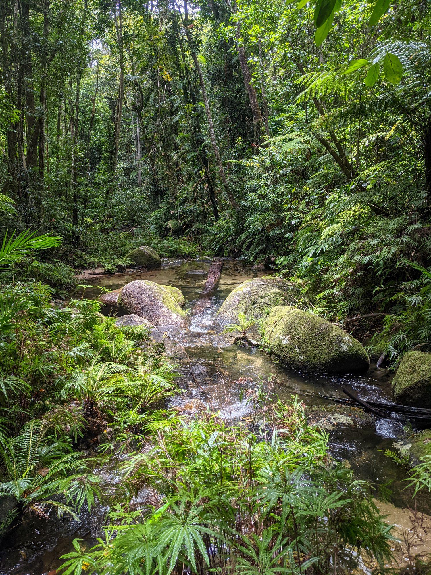 mid double barrel creek rocks