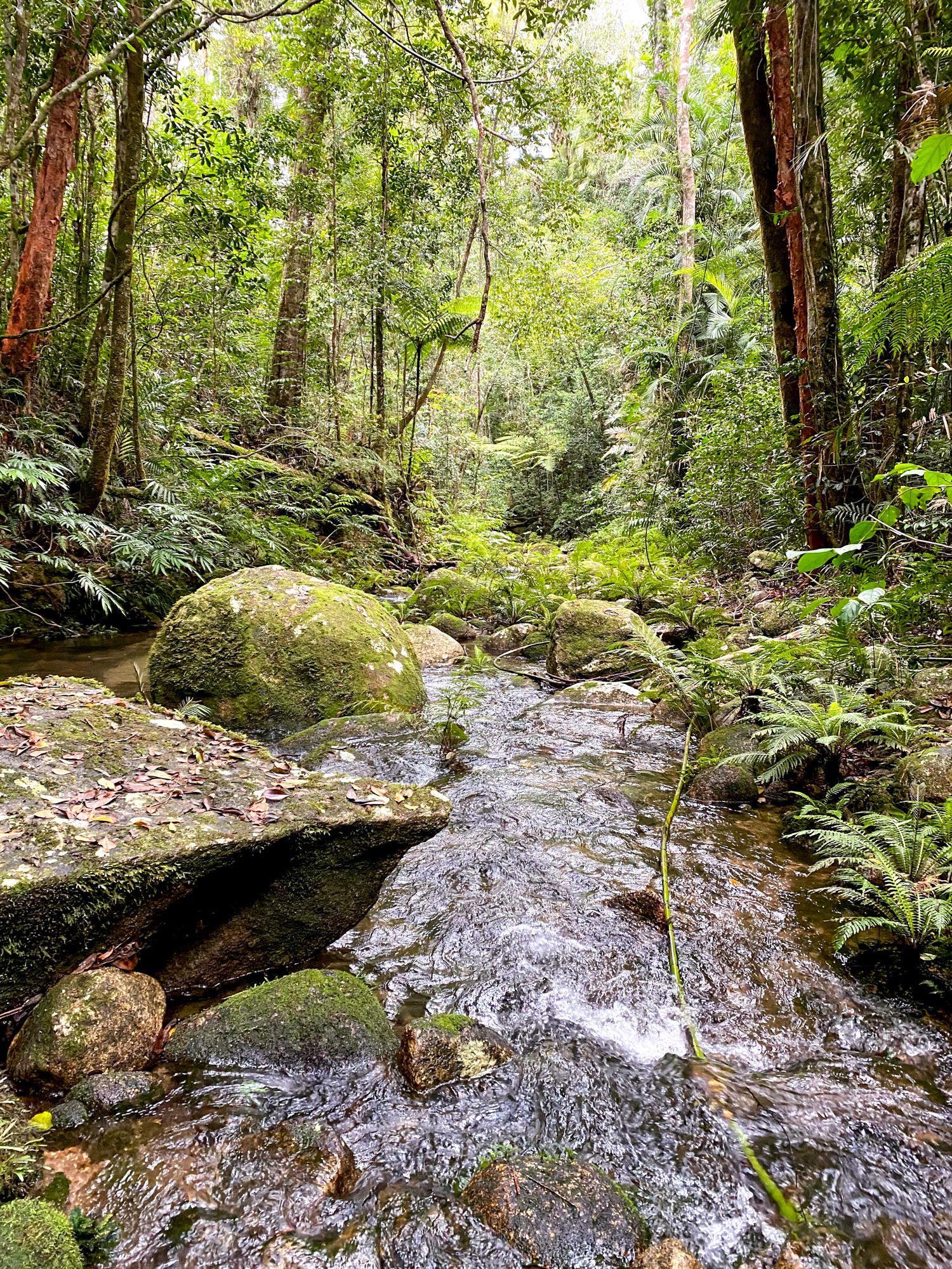 paluma upper double barrel creek