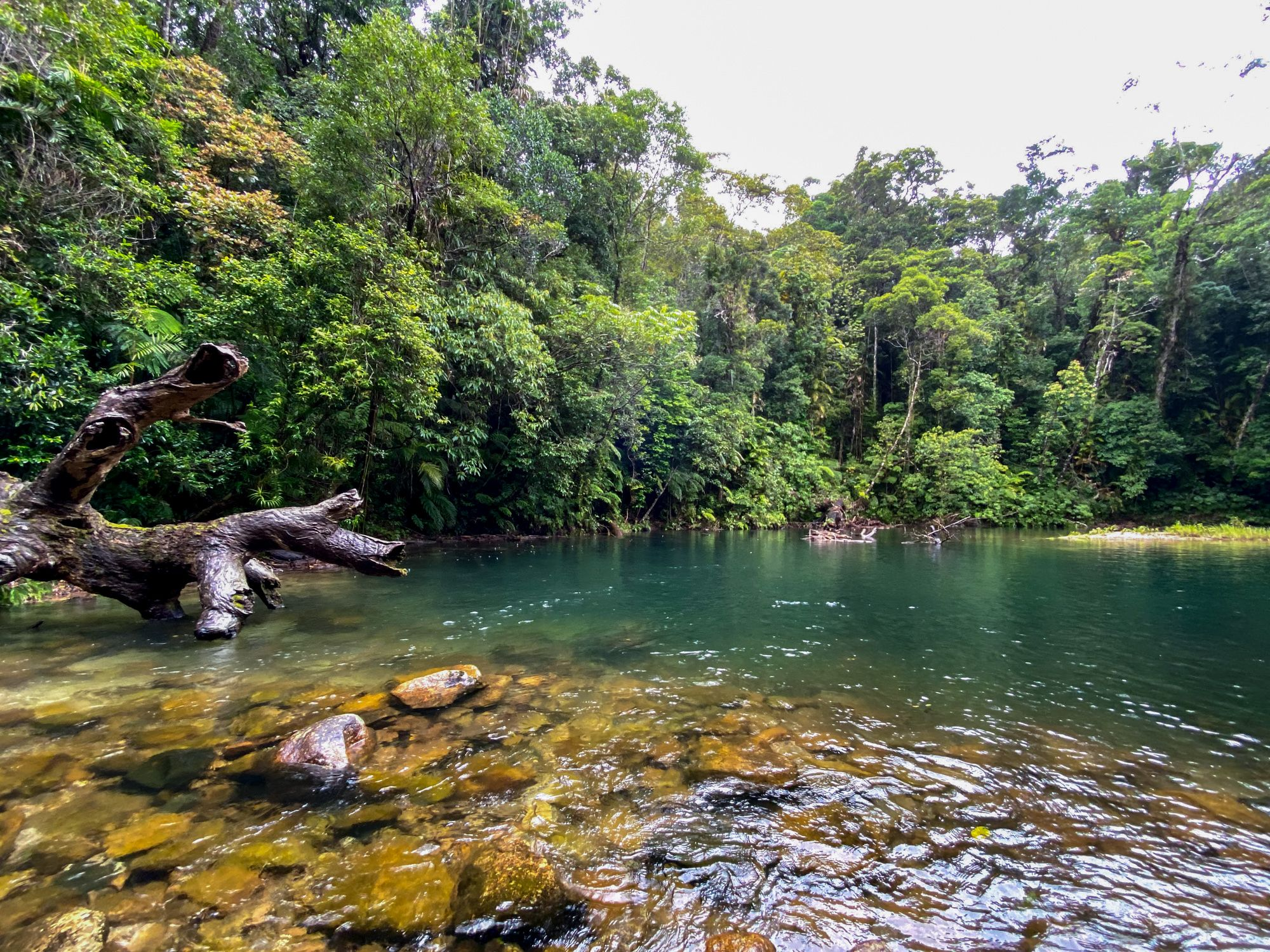 the blue lagoon crystal creek