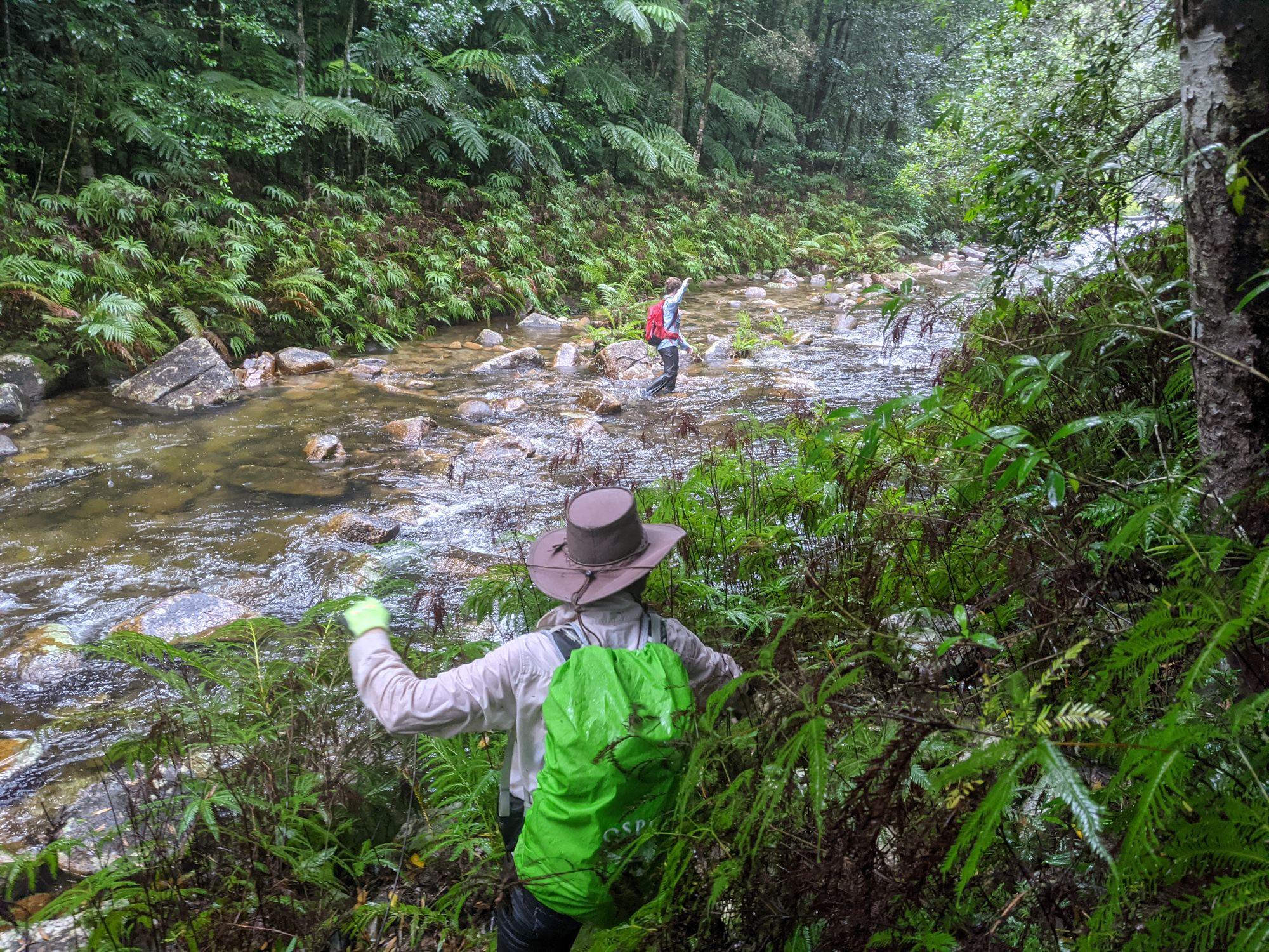 upper crystal creek hike