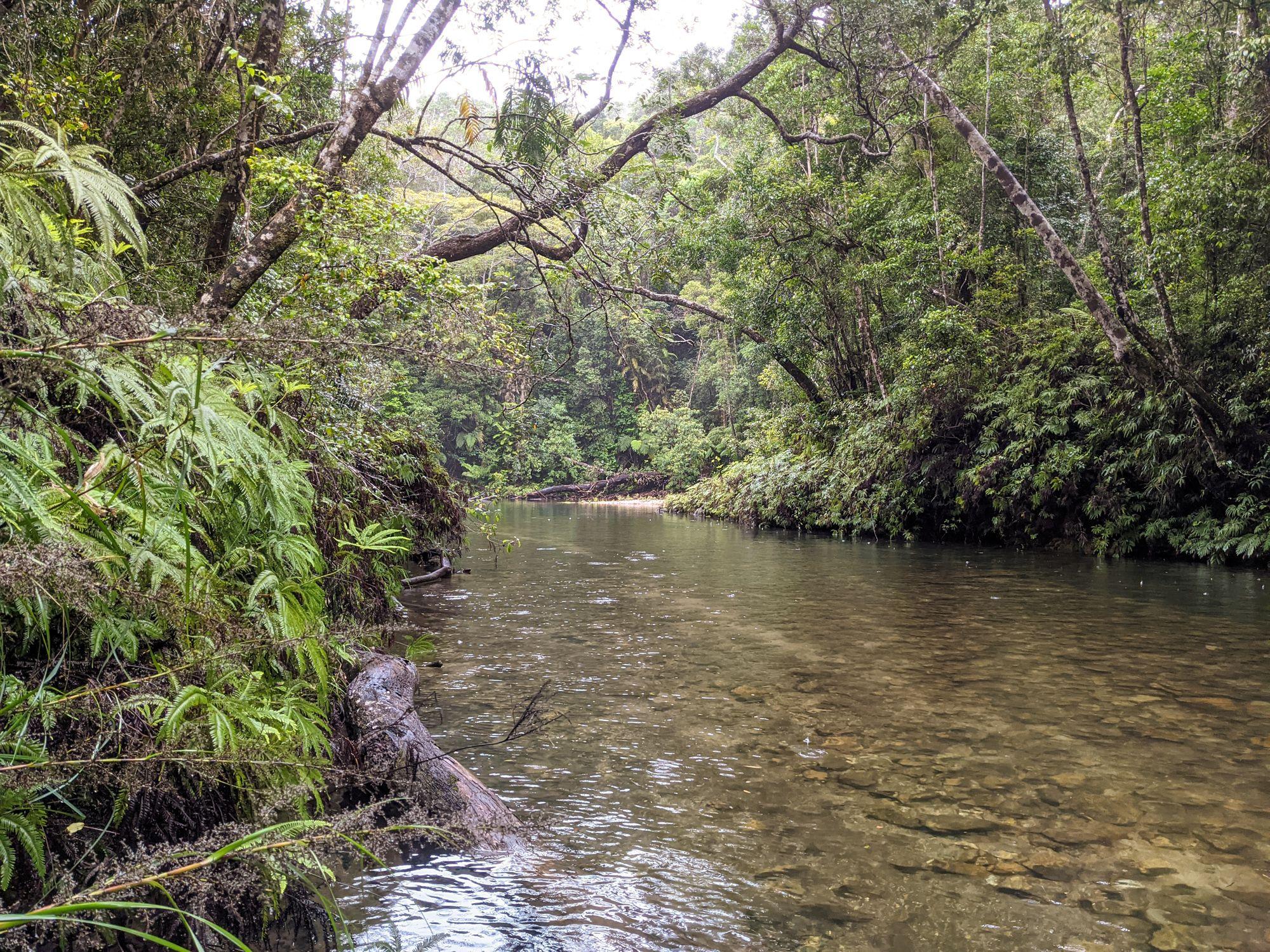 upper crystal creek waterway