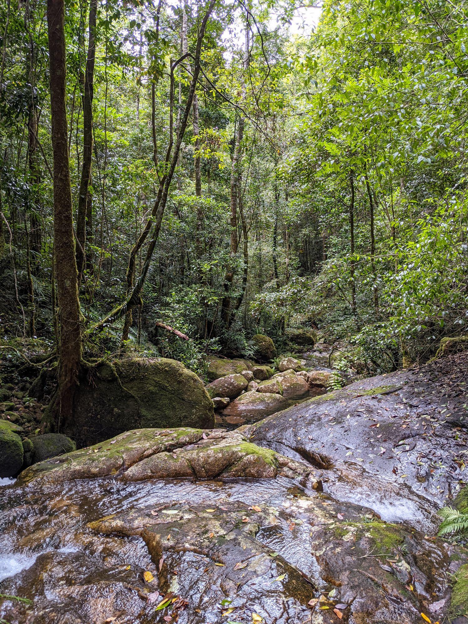 upper double barrel creek paluma