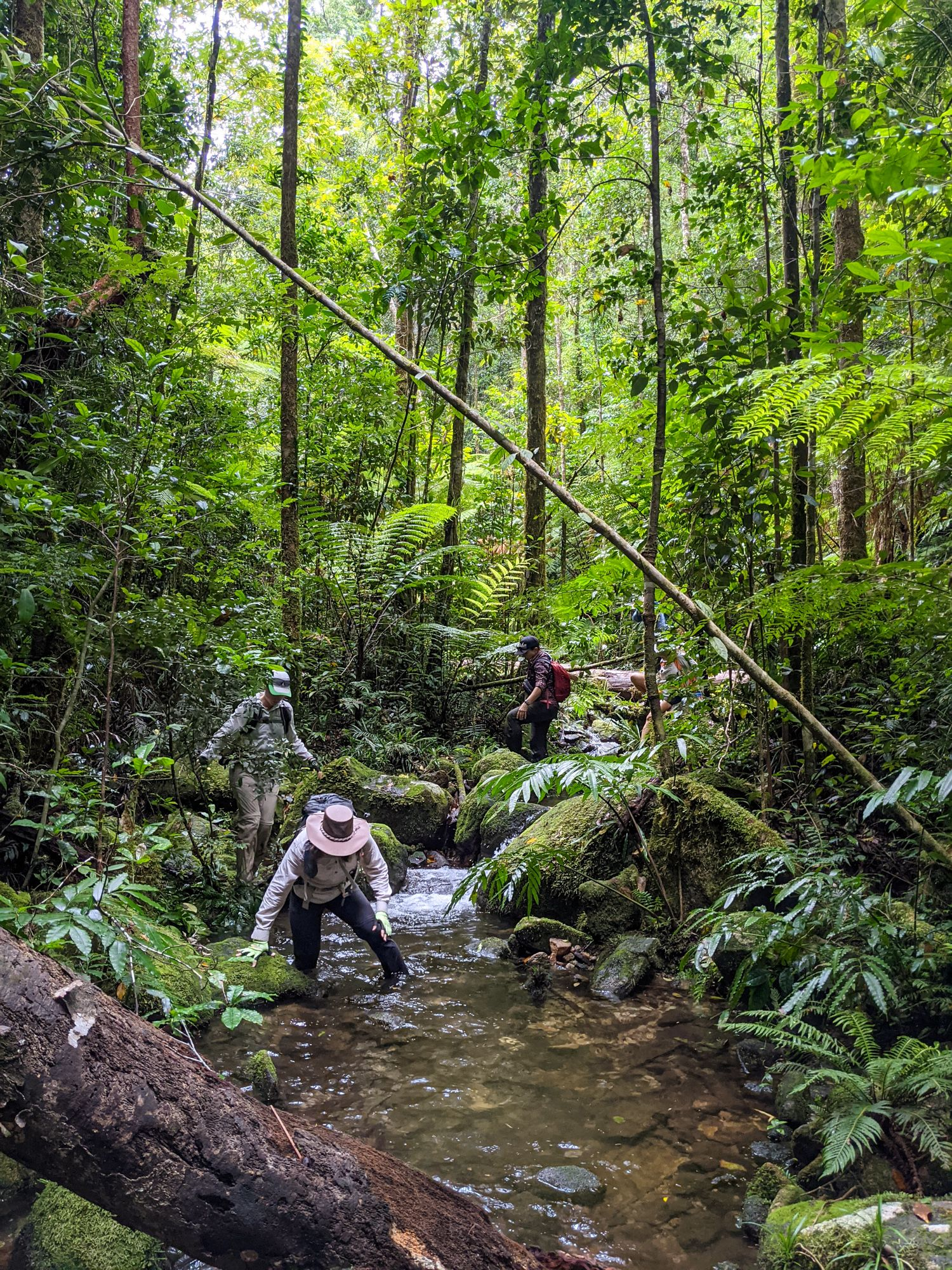 upper double barrel creek